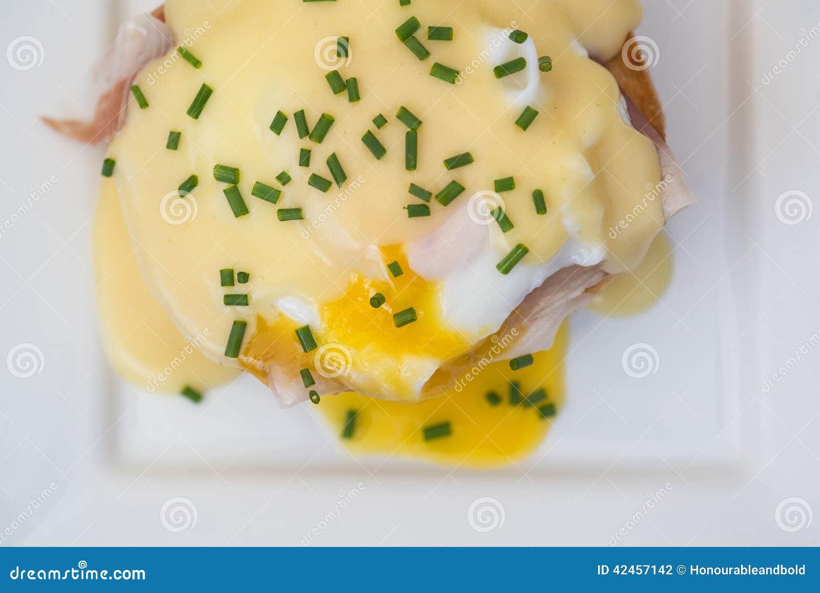 Eier Benedict rösteten Schinken der englischen Muffins poschierte Eier und Holla