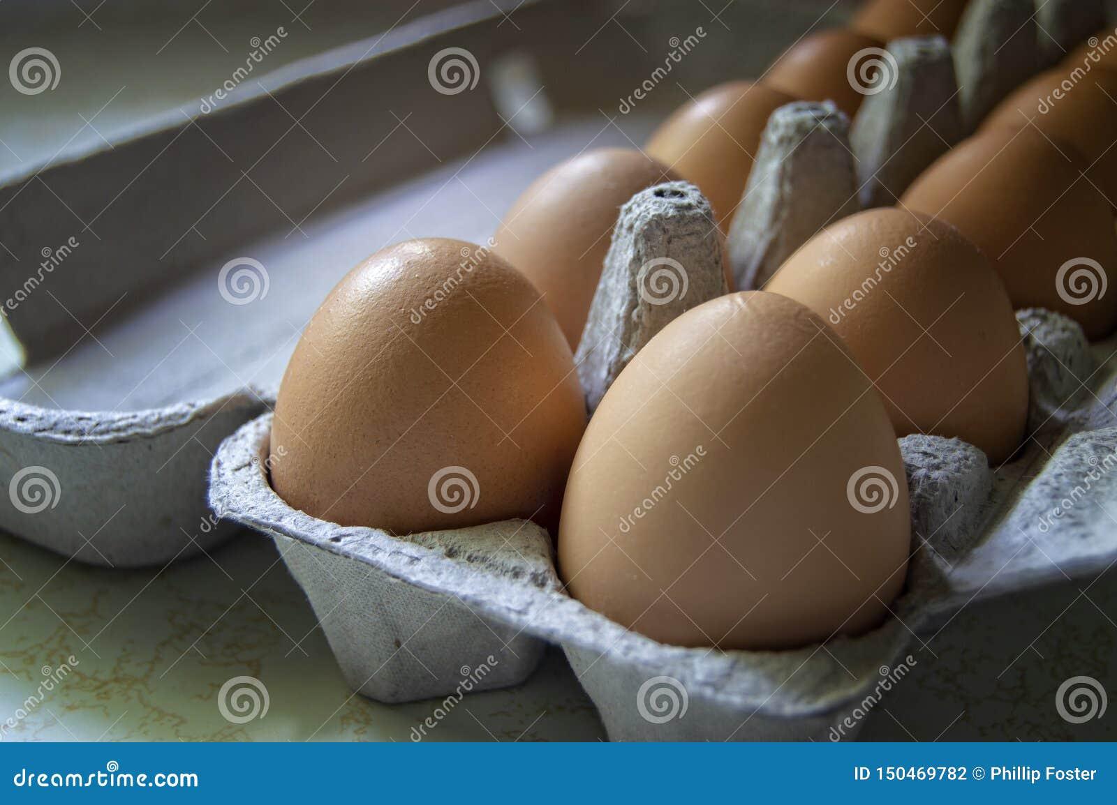 Eieren in een Karton