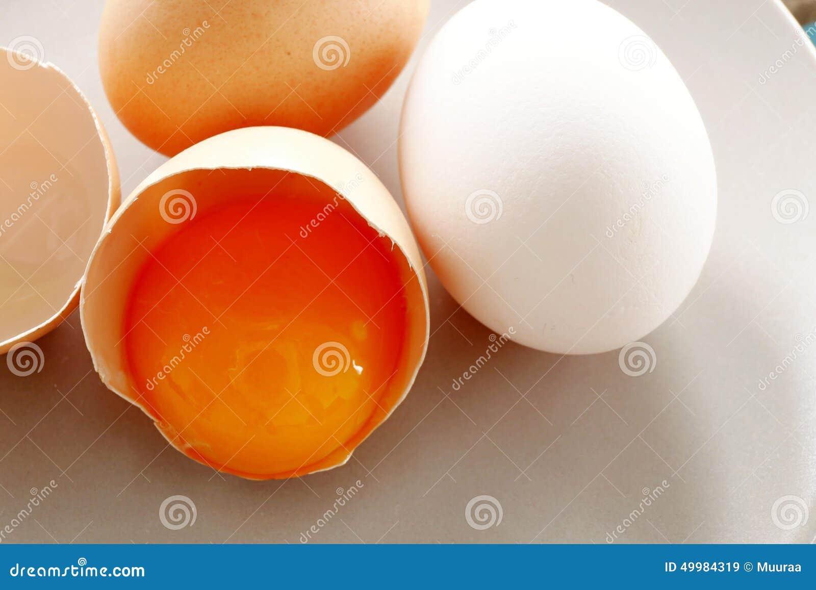 Eieren en dooier