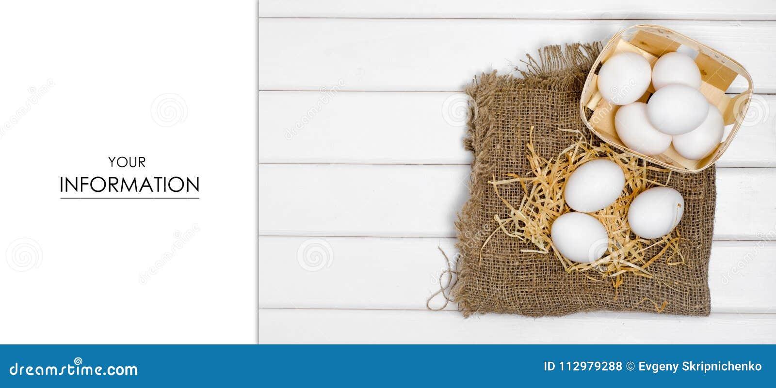 Eieren van wit hooipatroon