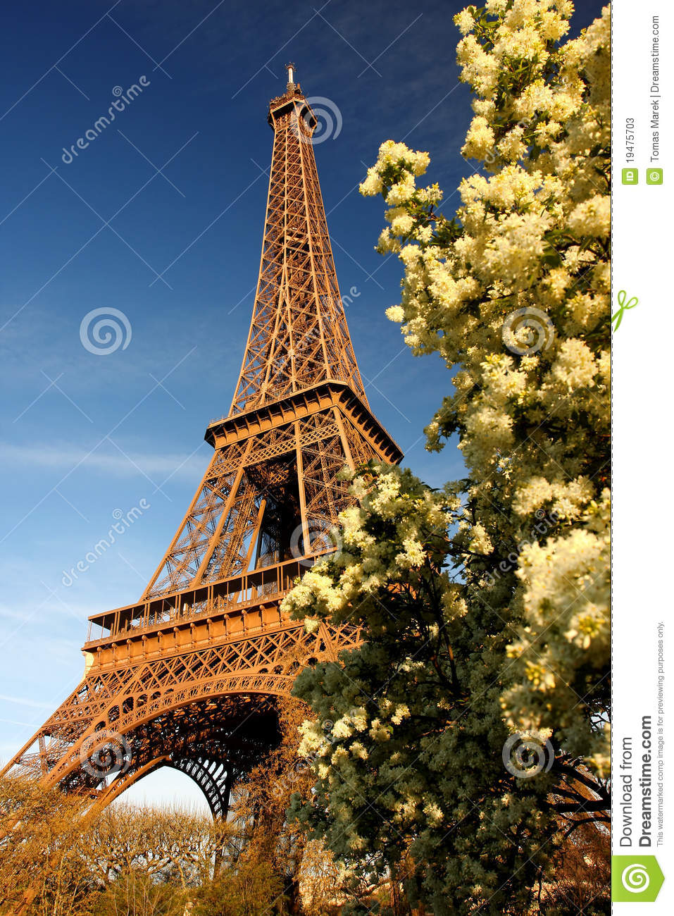 eiffel tower in spring time paris france stock image. Black Bedroom Furniture Sets. Home Design Ideas