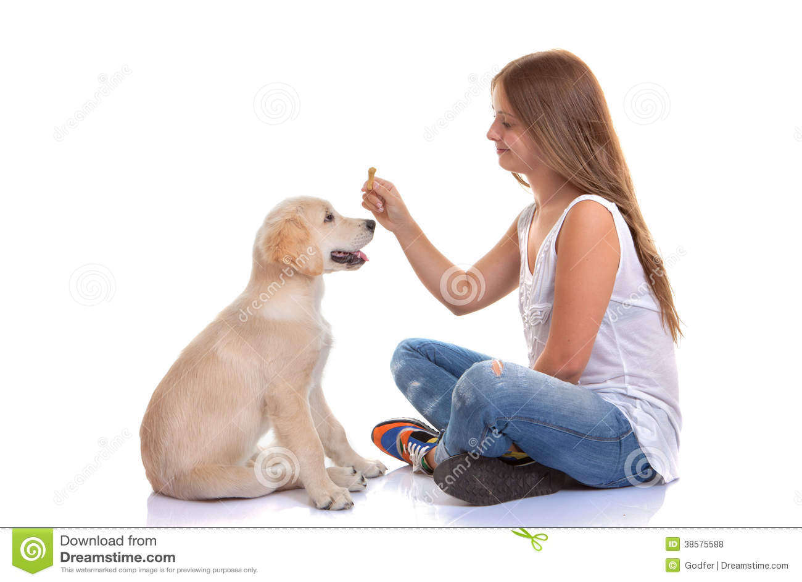 Eigenaar de hond van het opleidingspuppy