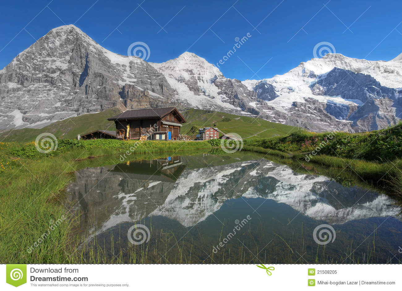 eiger monch jungfrau bernese alps switzerland royalty