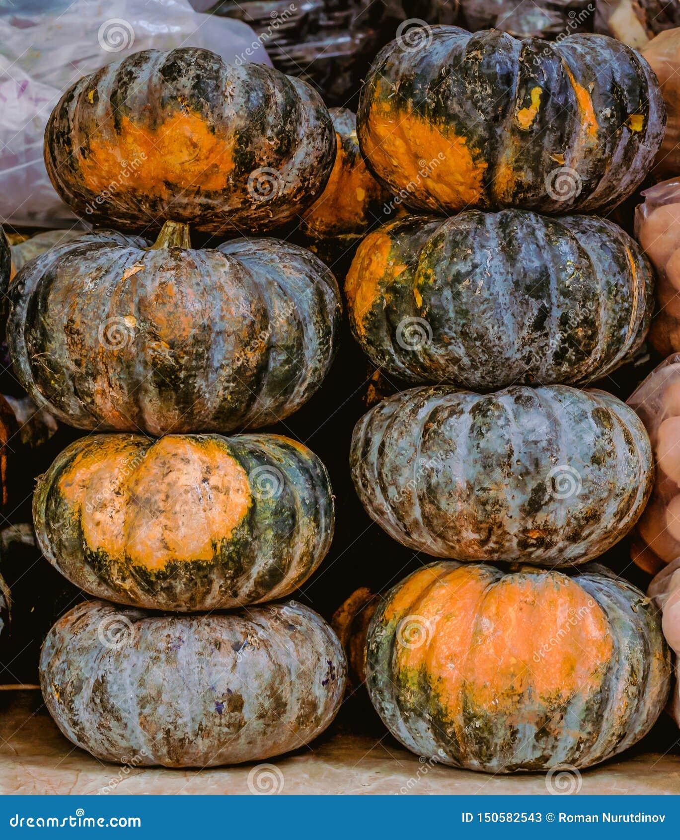Eight big pumpkins