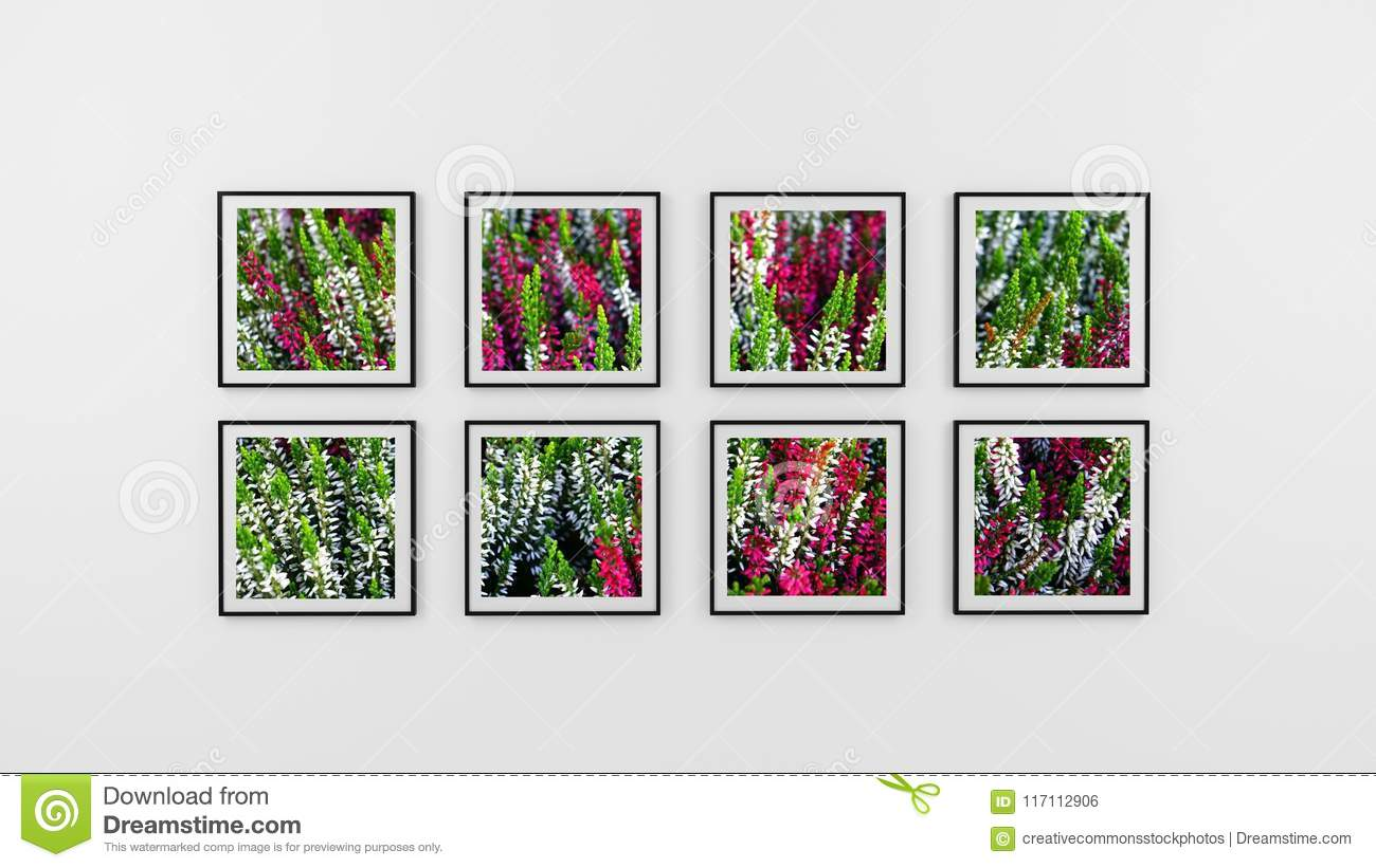 Free Public Domain CC0 Image: Eight Photo Frame Of Flowers Picture ...