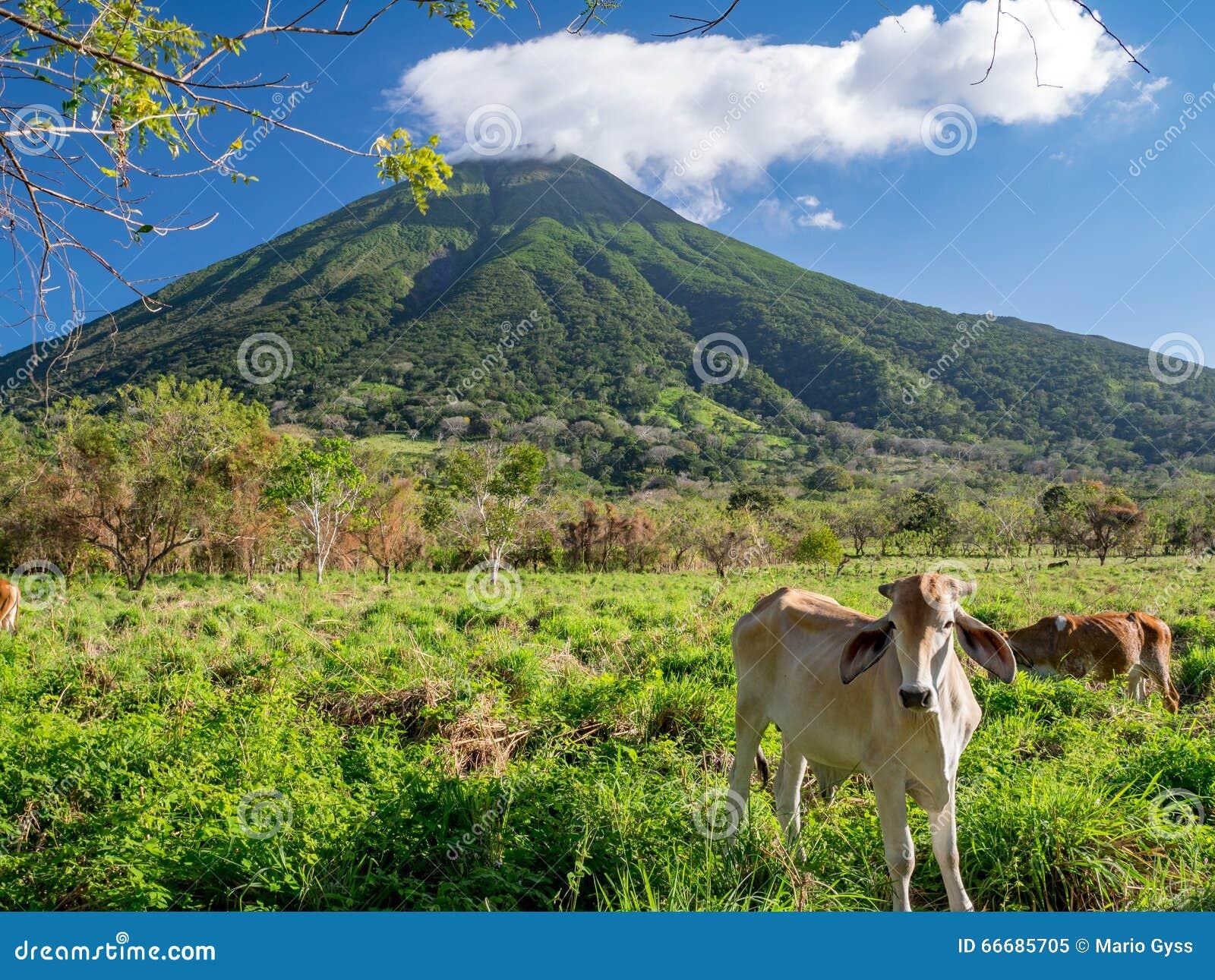 Eiland Ometepe in Nicaragua