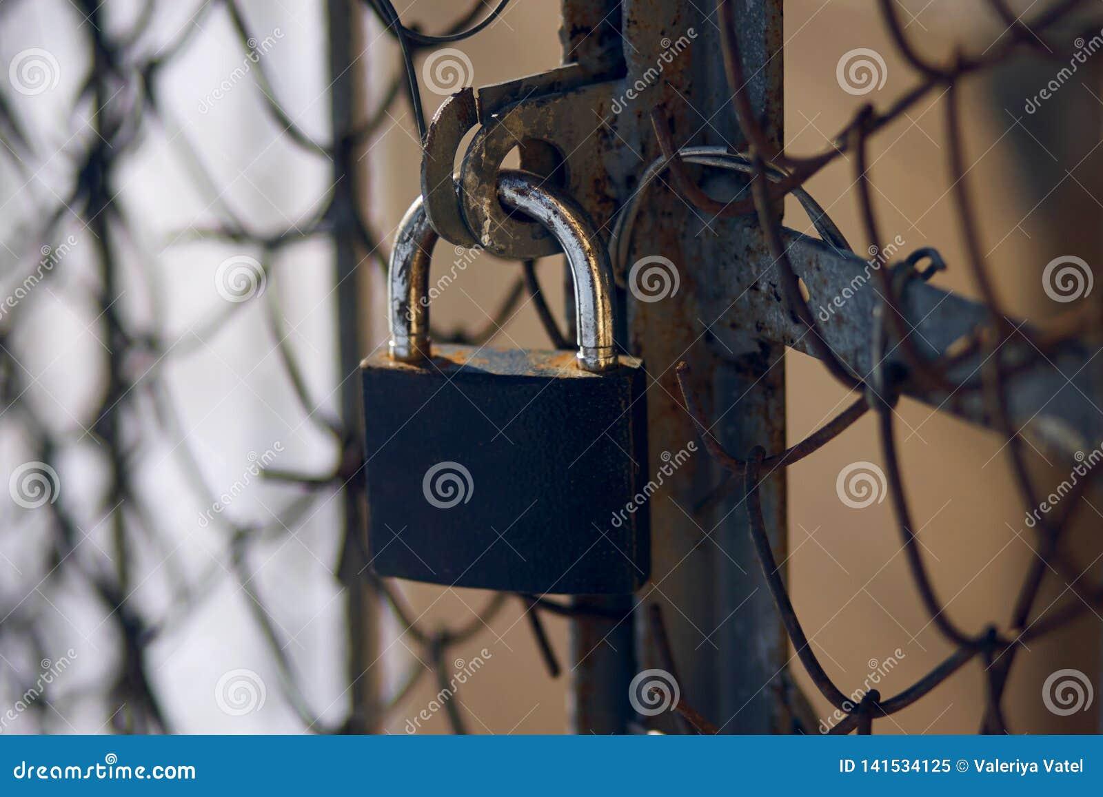Ein abgedroschener Verschluss, der ein altes rostiges Tor mit einer Metallmasche umfasst