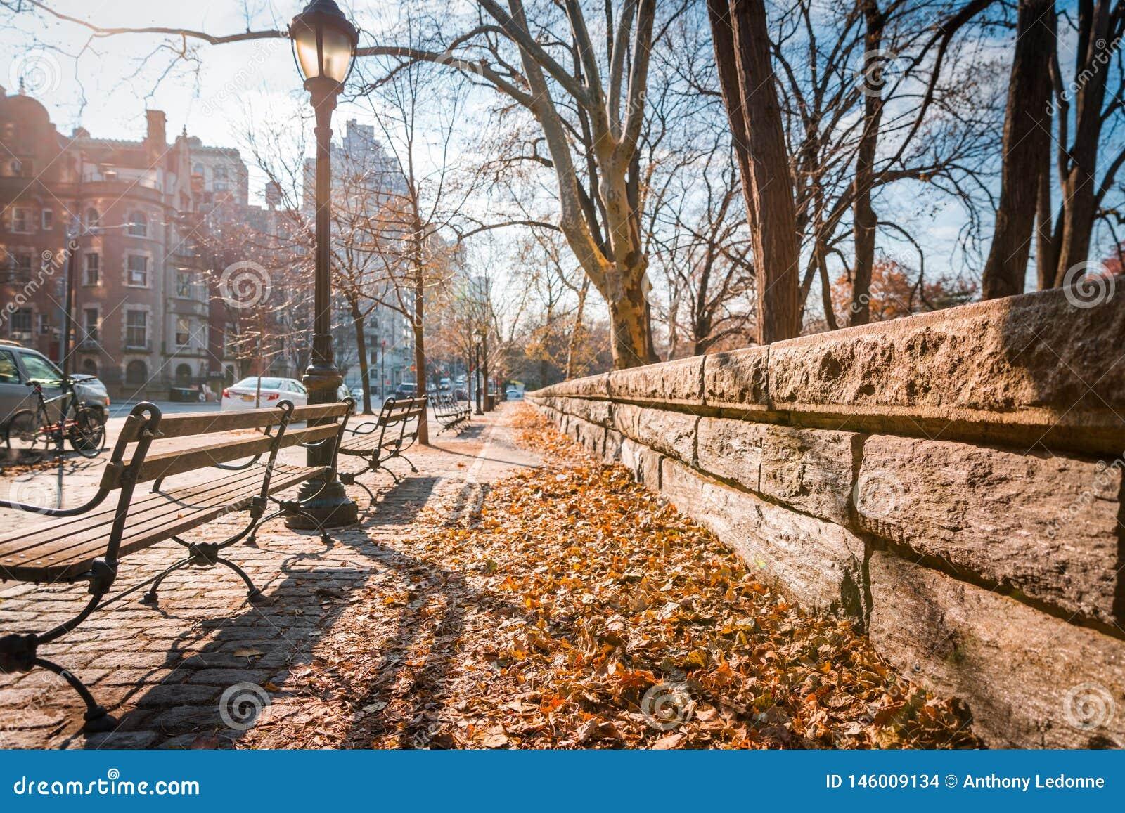 Ein Blatt-bedeckter Bürgersteig in New York