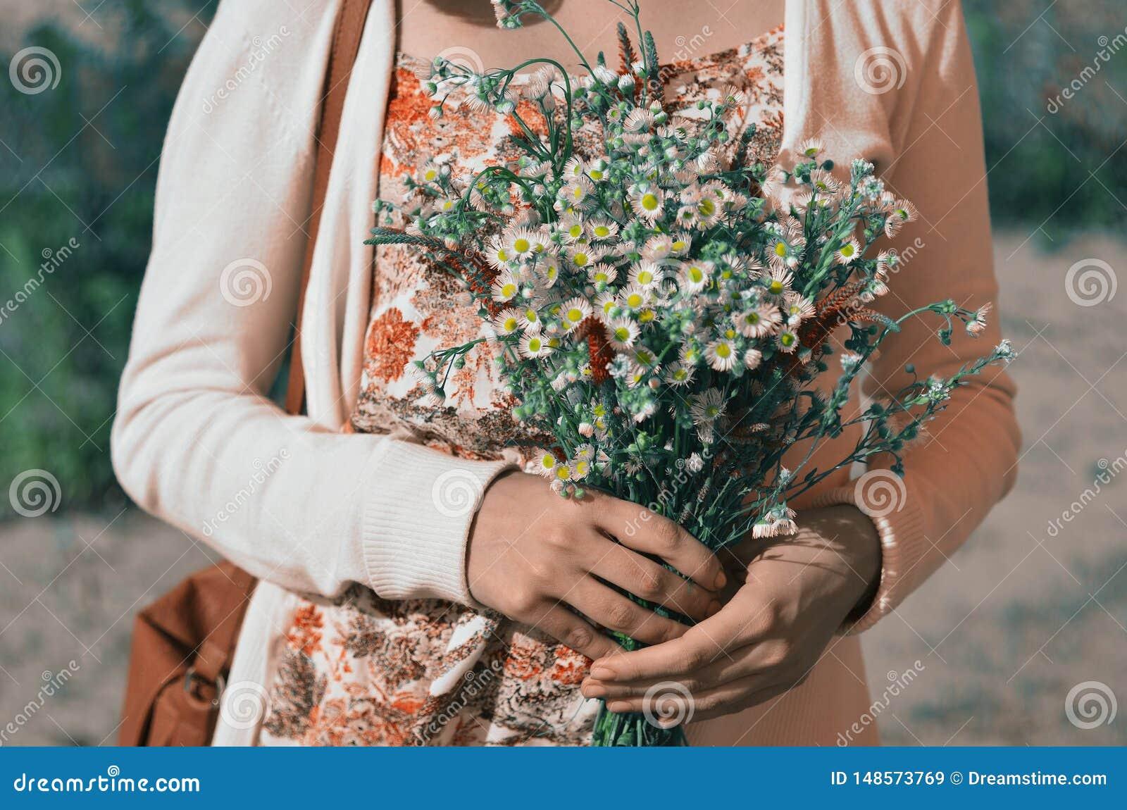Ein Blumenstrauß von wilden wilden Blumen von Gänseblümchen in den Händen eines Mädchens gekleidet in einem Blumendruckkleid und