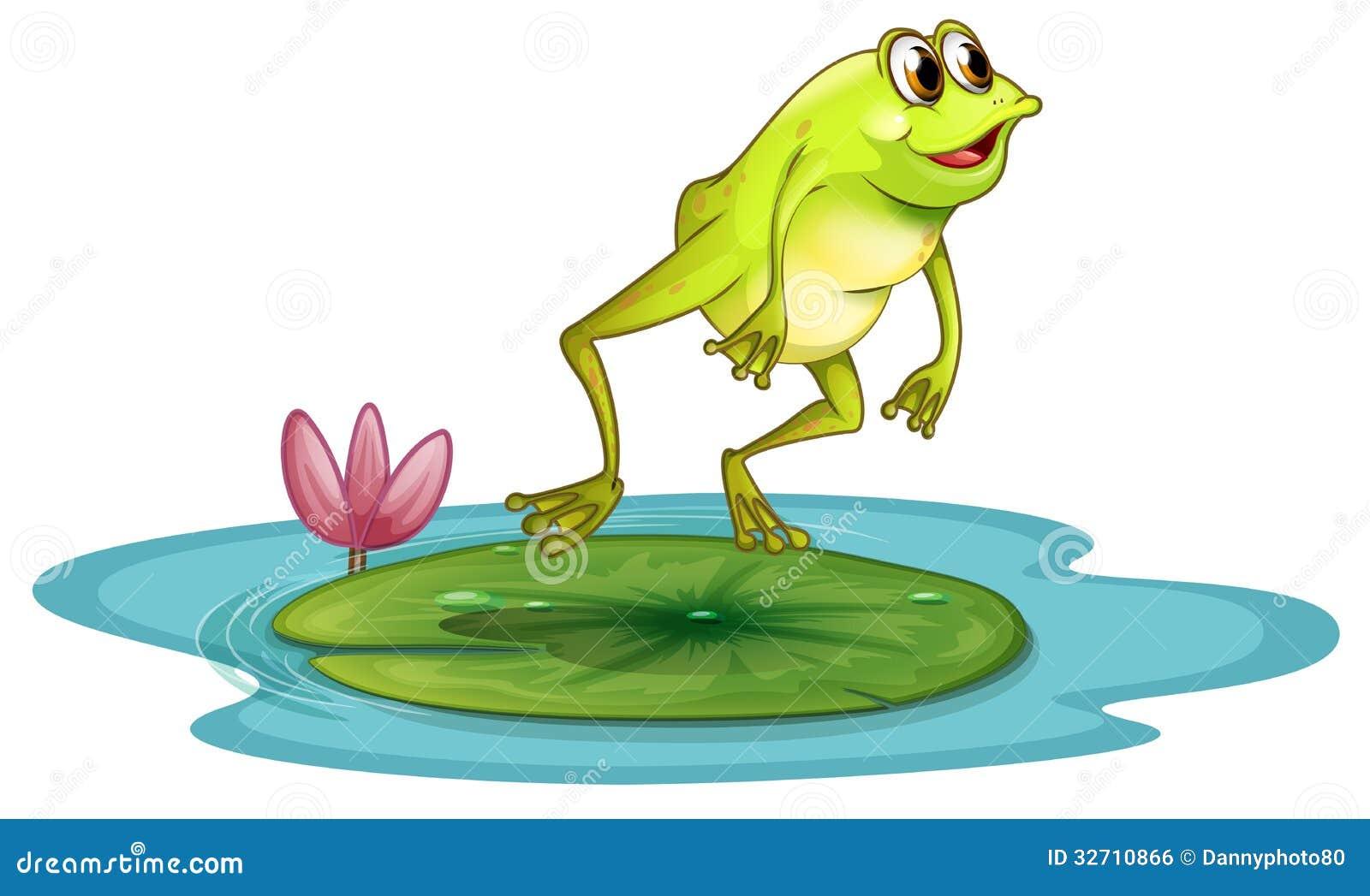 ein frosch in dem teich lizenzfreies stockbild bild 32710866 vectorfog vector forge