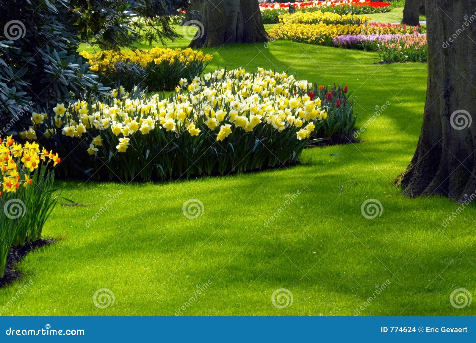 Ein Garten im Frühjahr