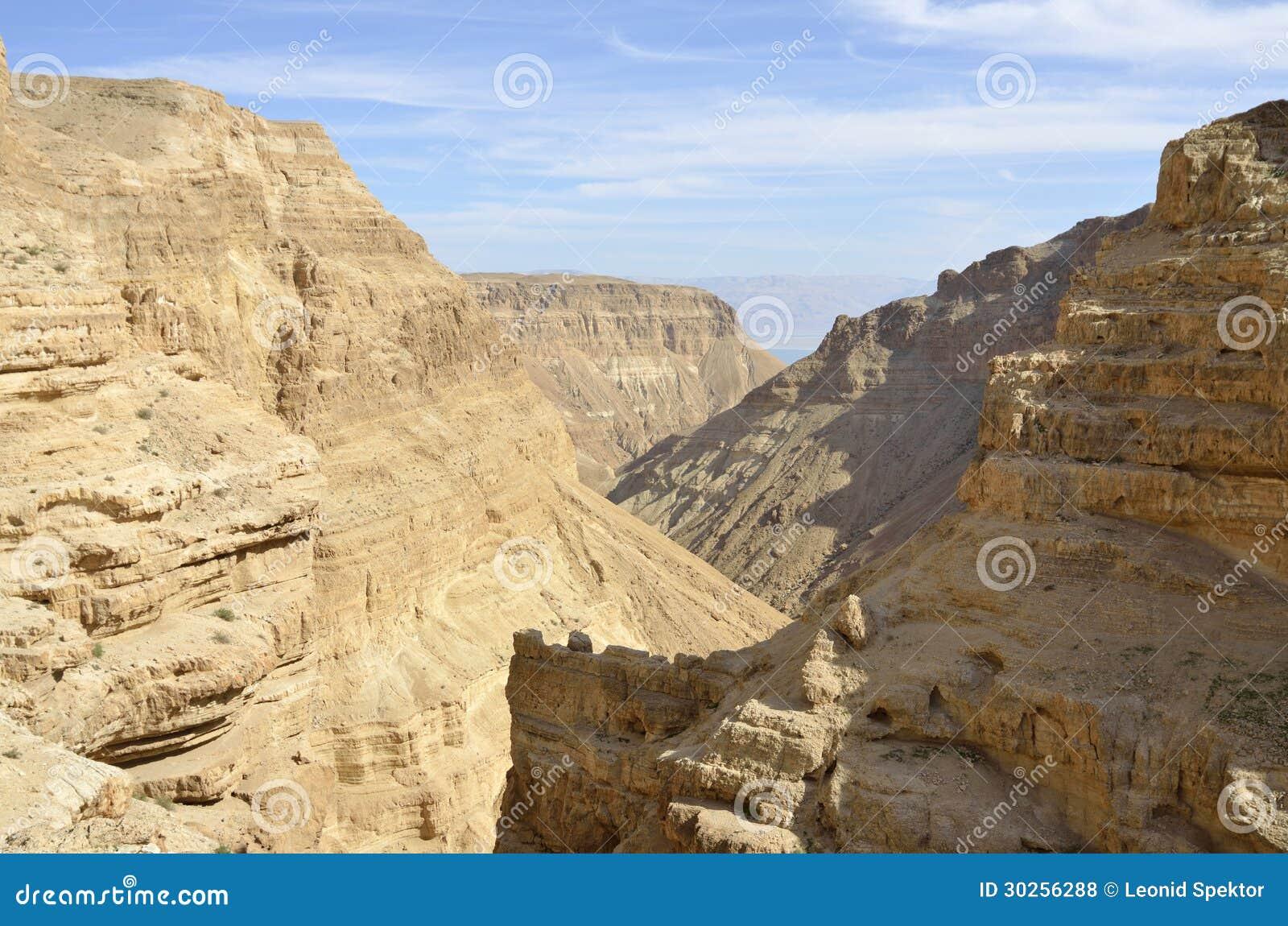深峡谷在Judea沙漠。