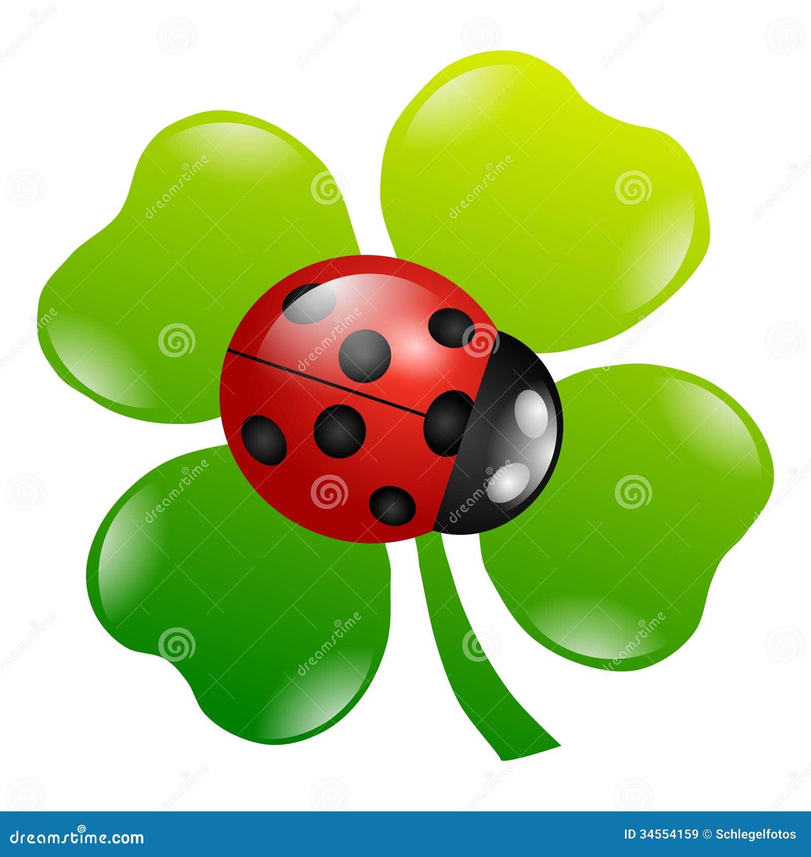 Ein Grünes Kleeblatt Stockbild Bild Von Vier Nave Blatt 34554159