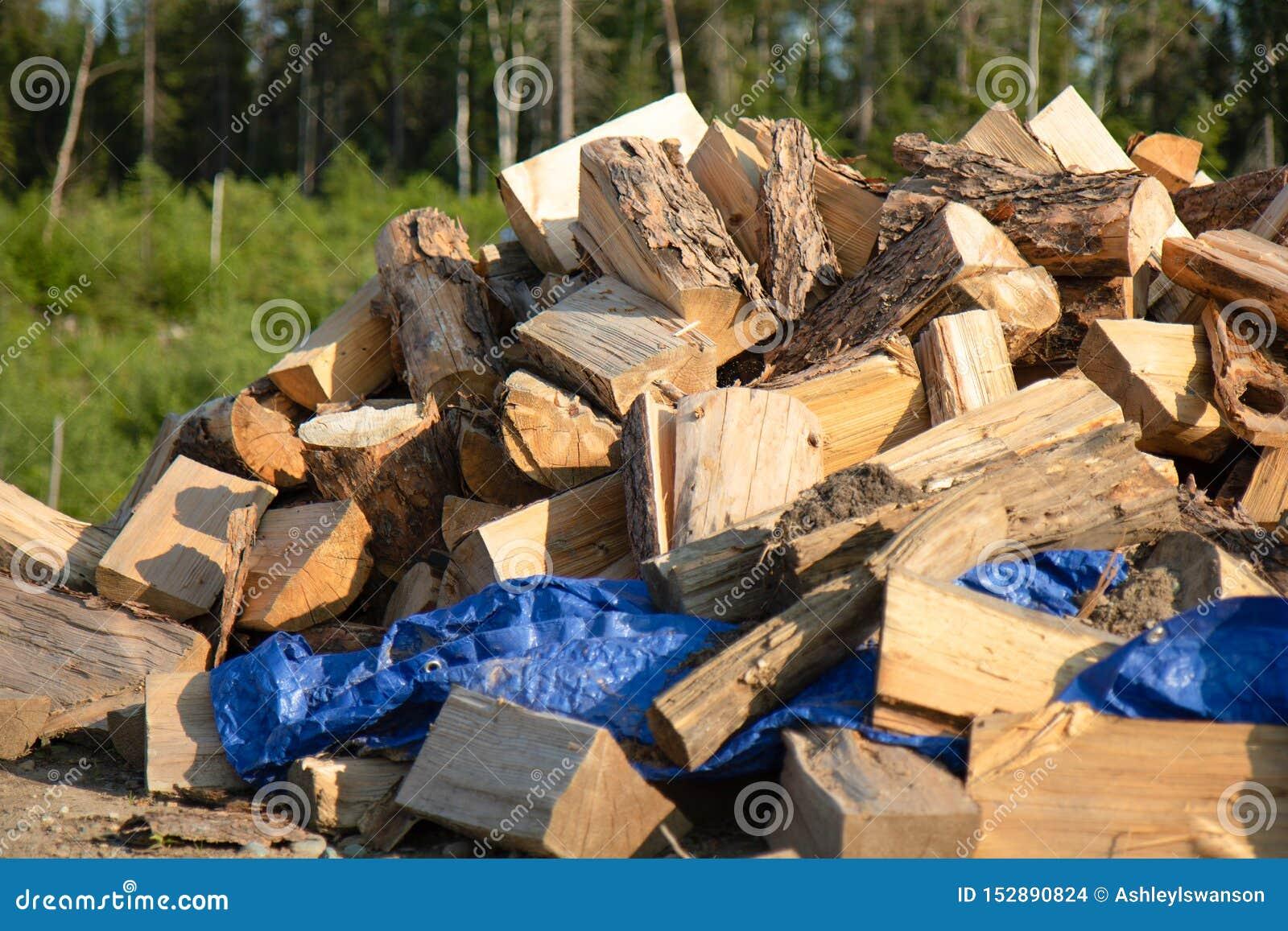 Ein großer Stapel des Holzes im Sommer