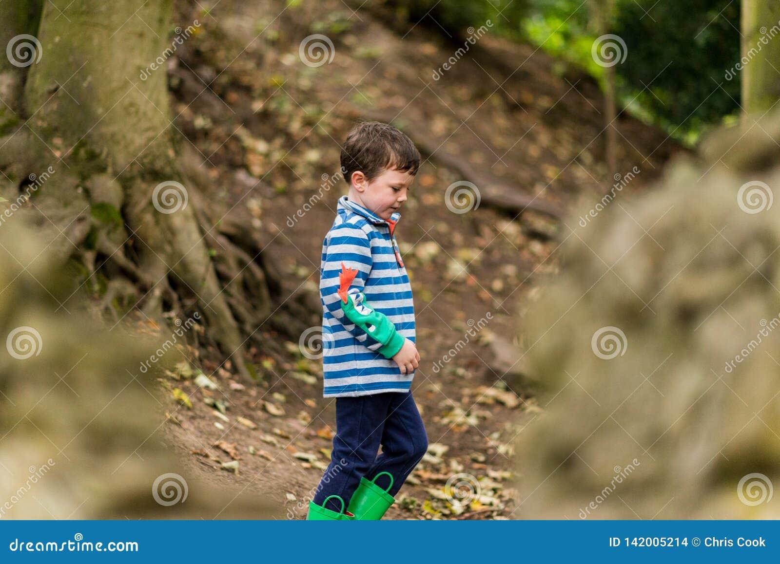 Ein kleiner Junge hat ein Abenteuer durch einen Wald