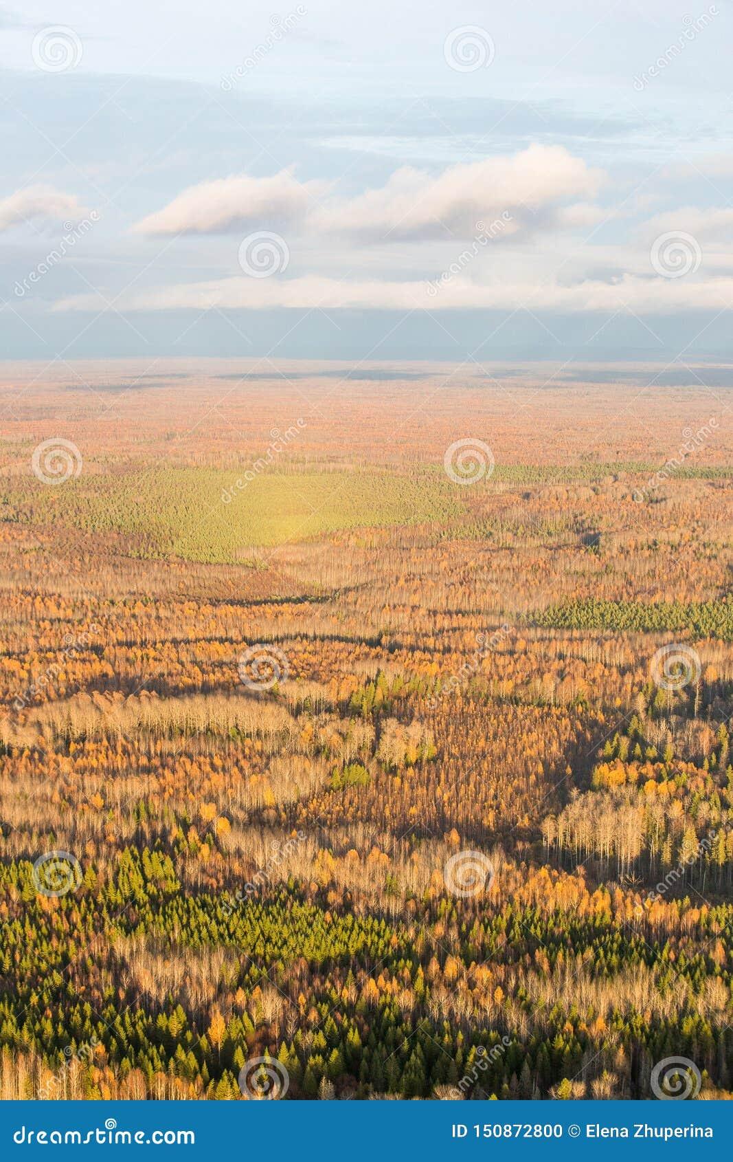Ein kleiner See, geformt wie ein menschliches Auge, eingefaßt durch Bäume und Schilfe