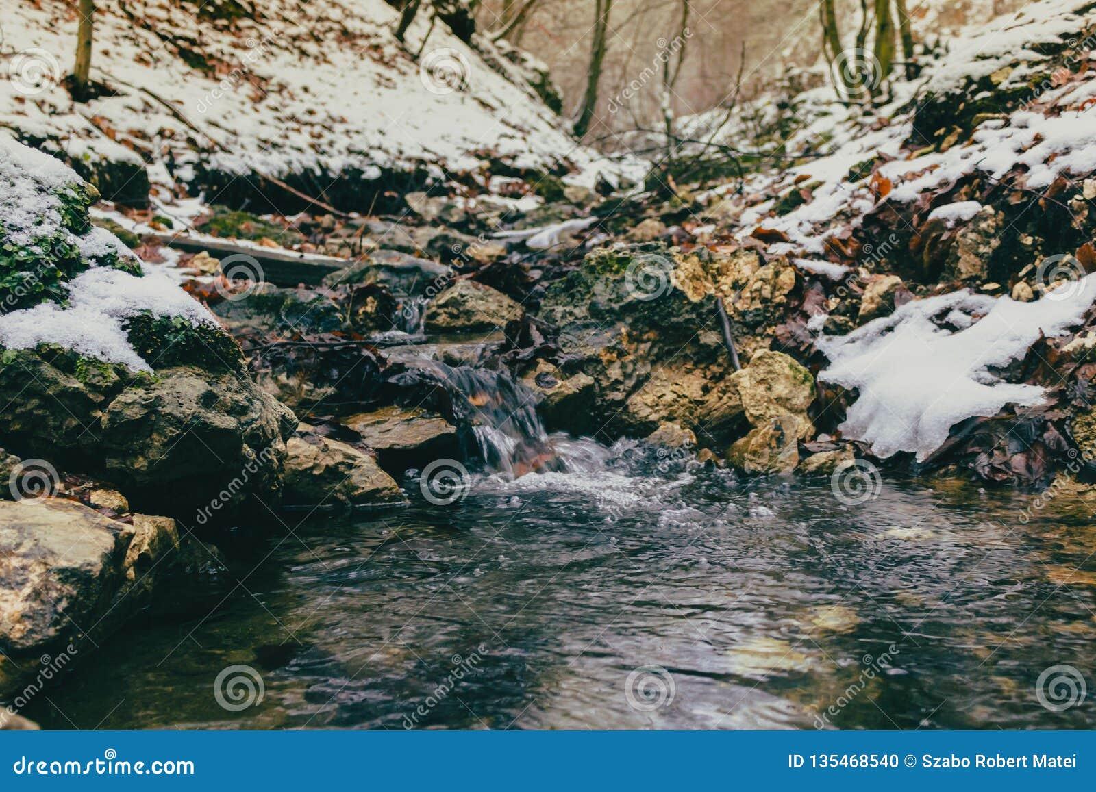 Ein kleiner Wasserstrom während des Winters