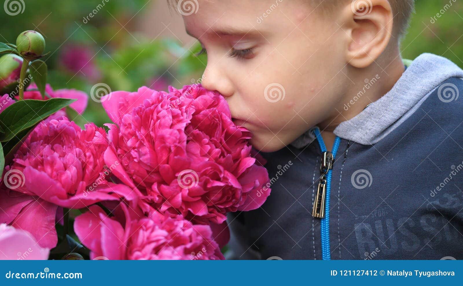 Ein kleines nettes Baby genießt leicht den Geruch von Blumen Das Kind hebt eine Blume auf und inhaliert seinen Duft blühen
