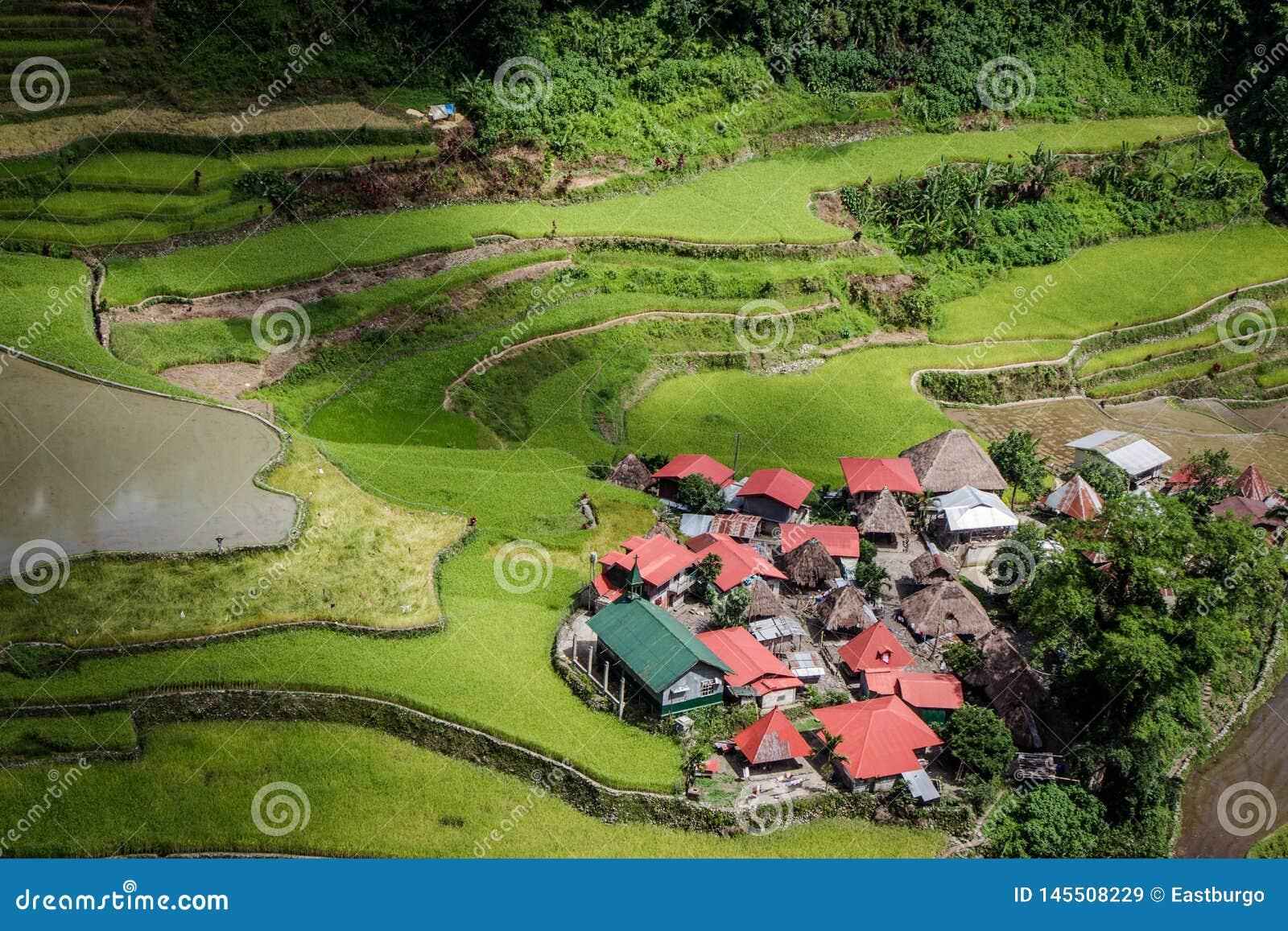 Ein lokalisiertes Dorf auf den Batad-Reisterrassen