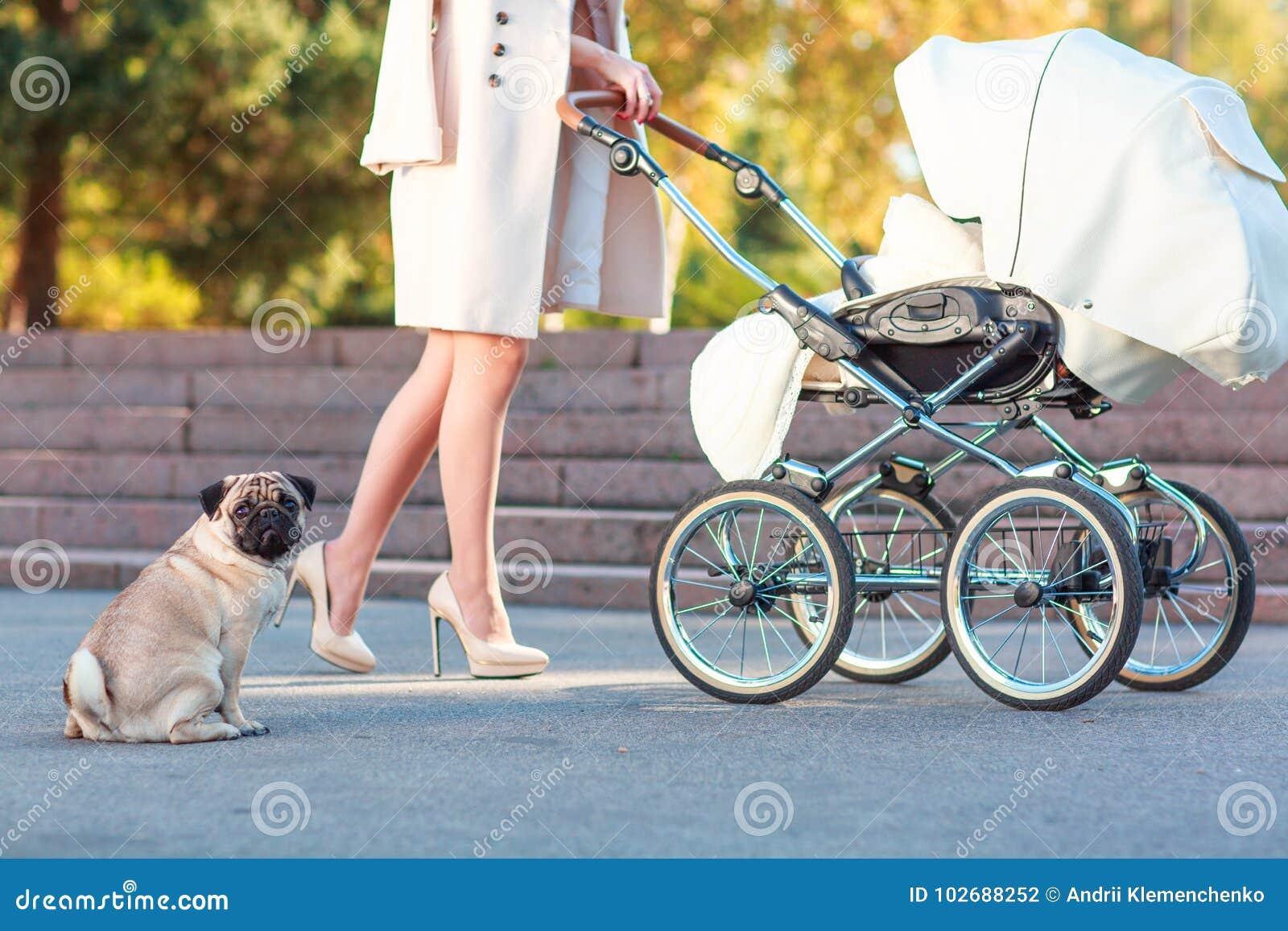 Ein Mädchen rollt einen Rollstuhl und ein Hund sitzt nahe bei ihr draußen