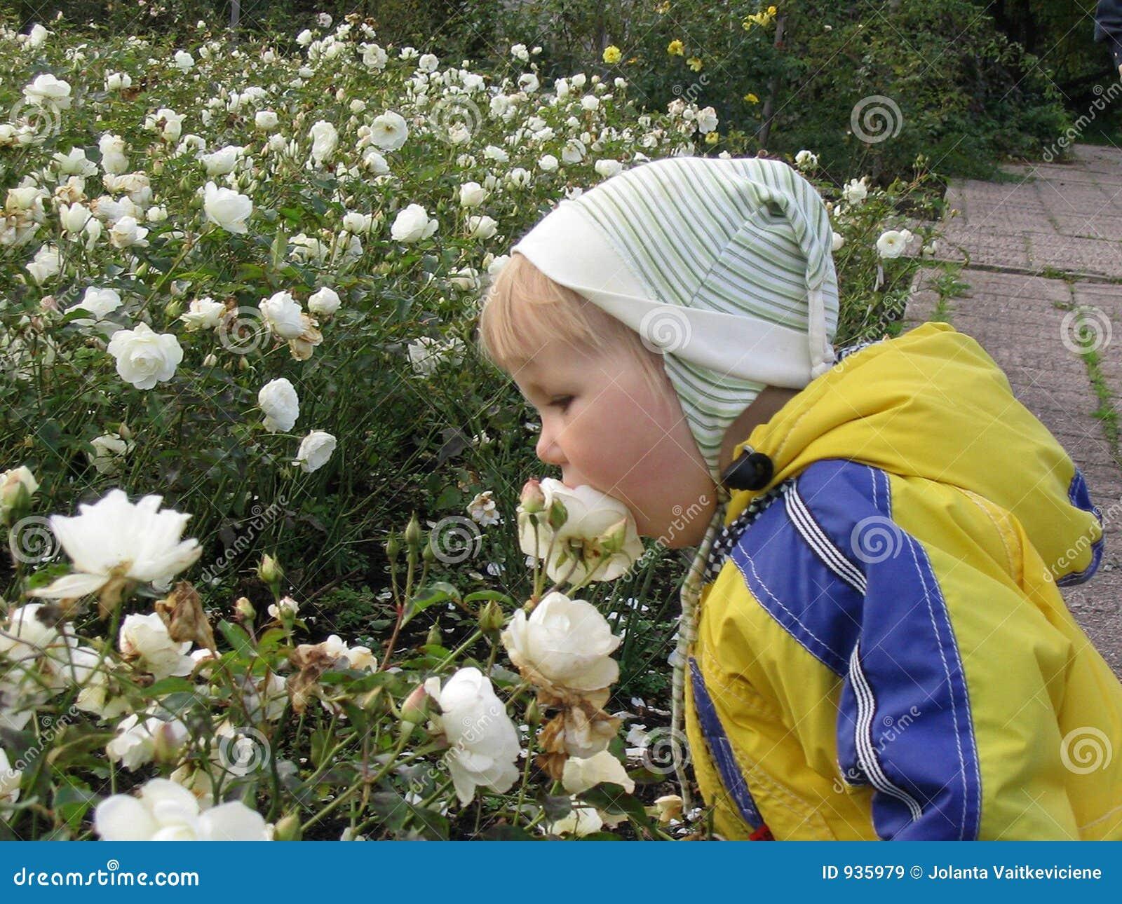 Ein Mädchen und Rosen