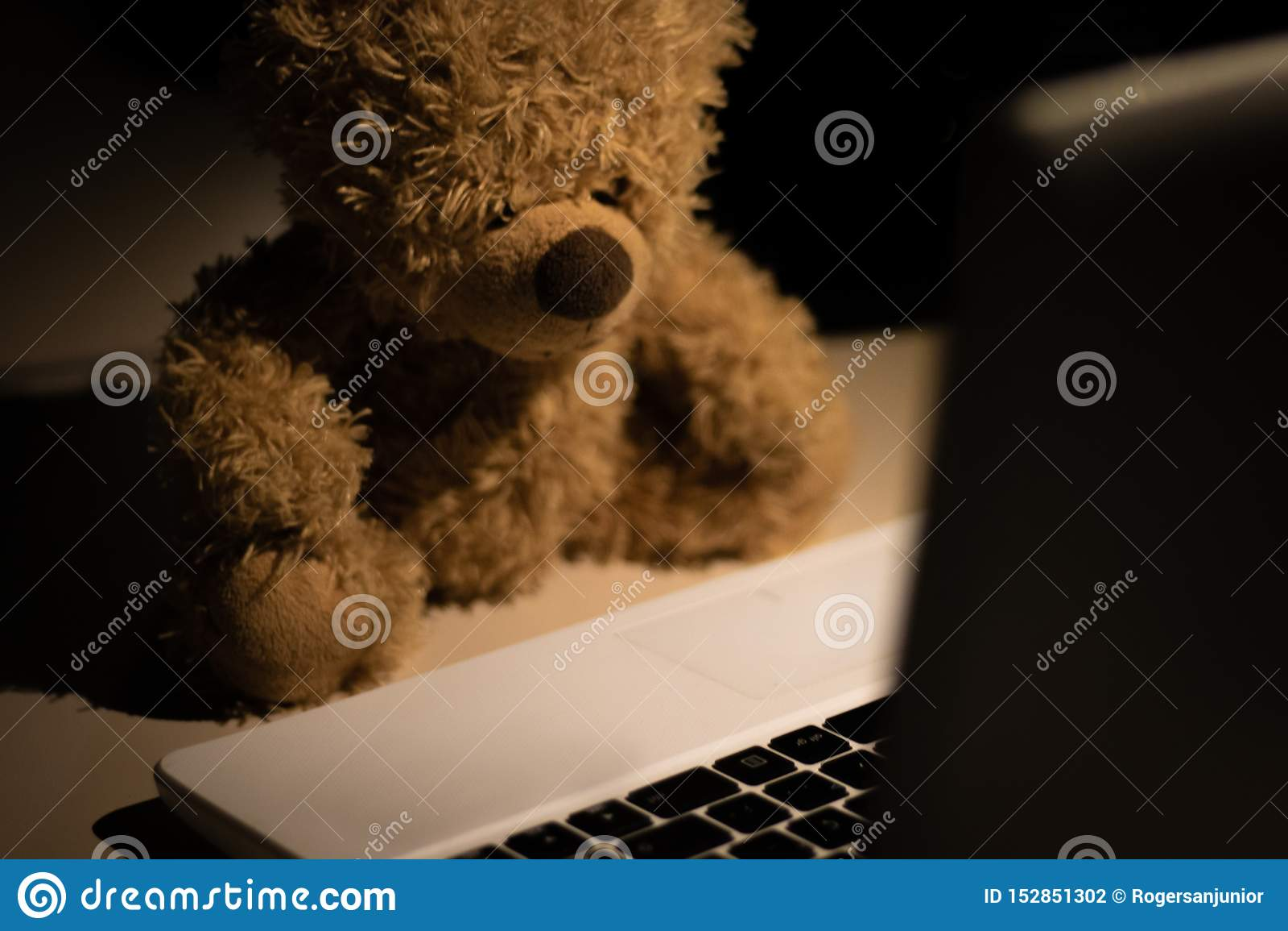Ein netter und moderner Teddybär