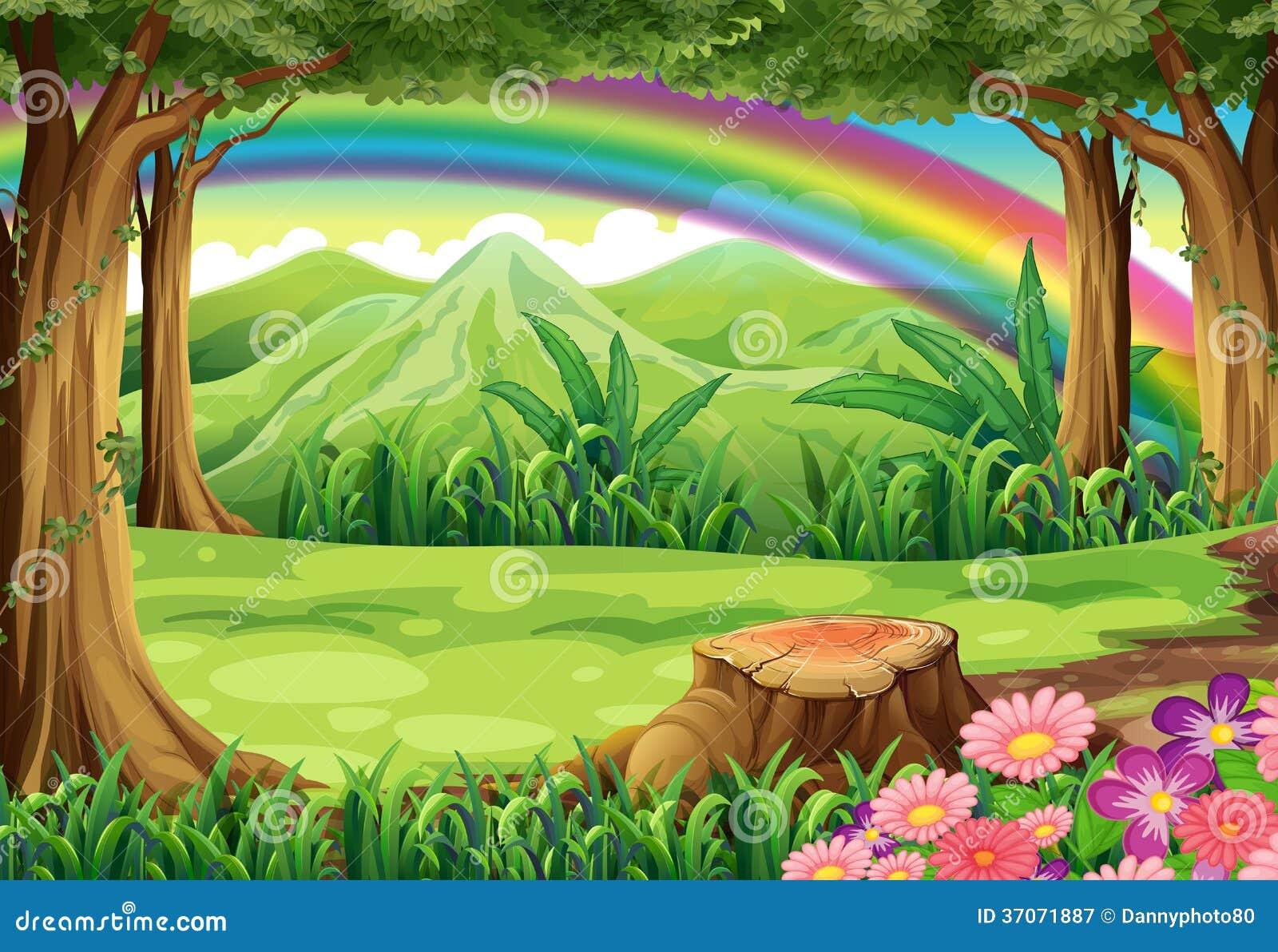 Ein Regenbogen und ein Wald