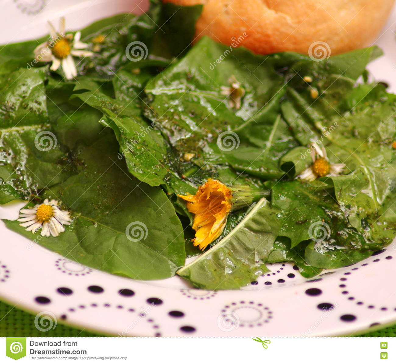 Ein Salat des Löwenzahns