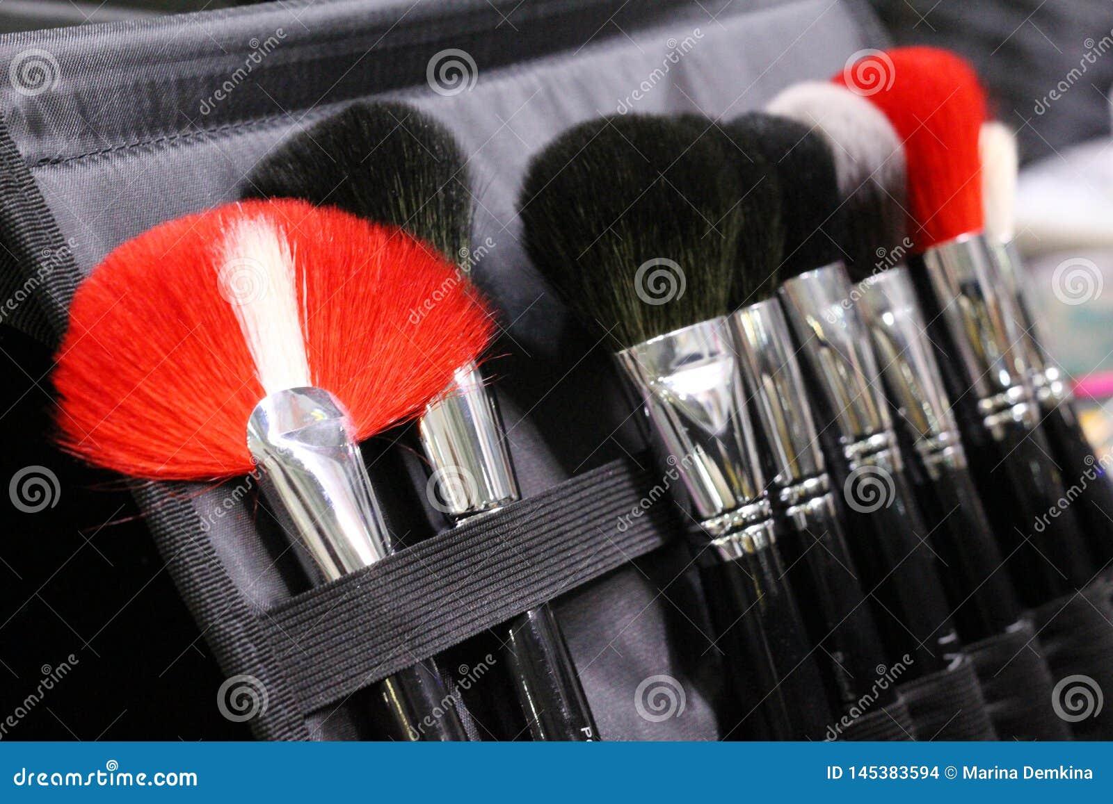 Ein Satz Make-upbürsten in einem Fall Bürstet Schwarzes, Rotes und weißes