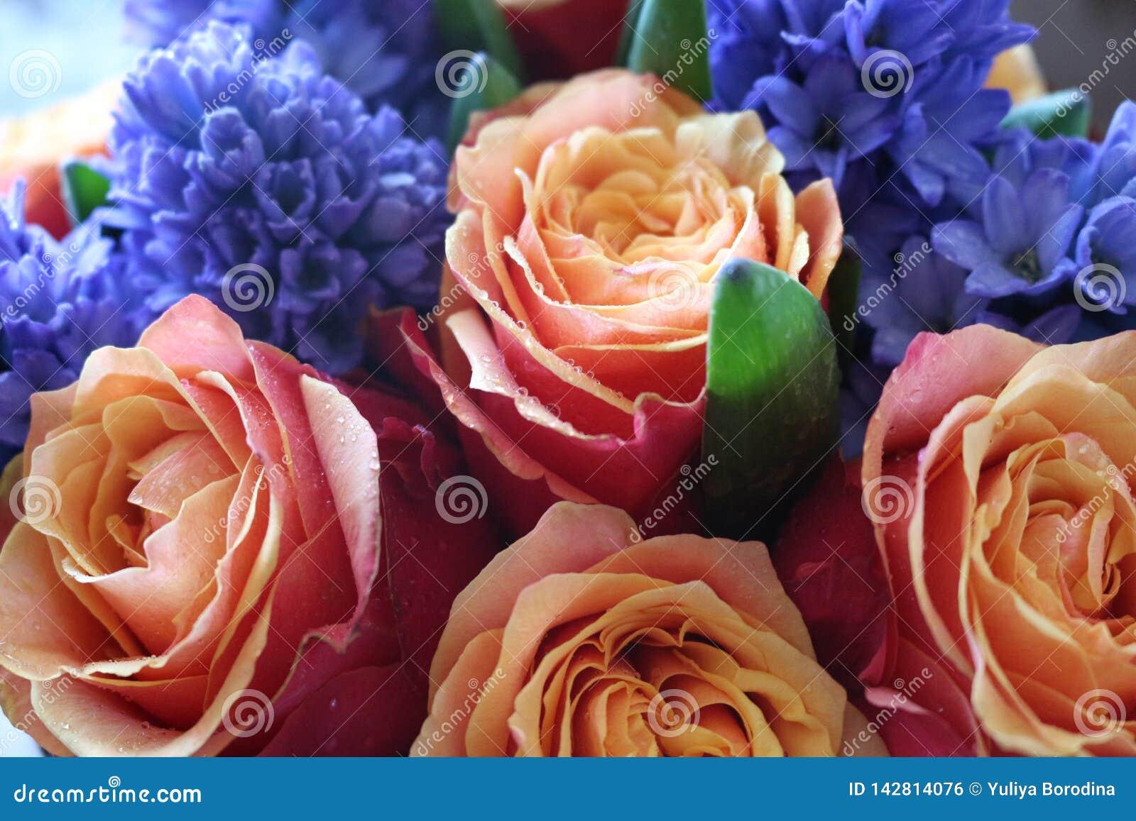 Ein sch?ner Blumenstrau? von Rosen und von Hyazinthen appelliert jeder Frau Sein k?niglicher Duft erobert jedes