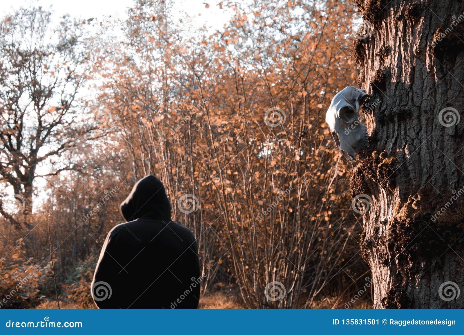 Ein Schafschädel, der von einem Baum hängt, während eine unheimliche mit Kapuze Zahl im Hintergrund steht, verwischt und unscharf