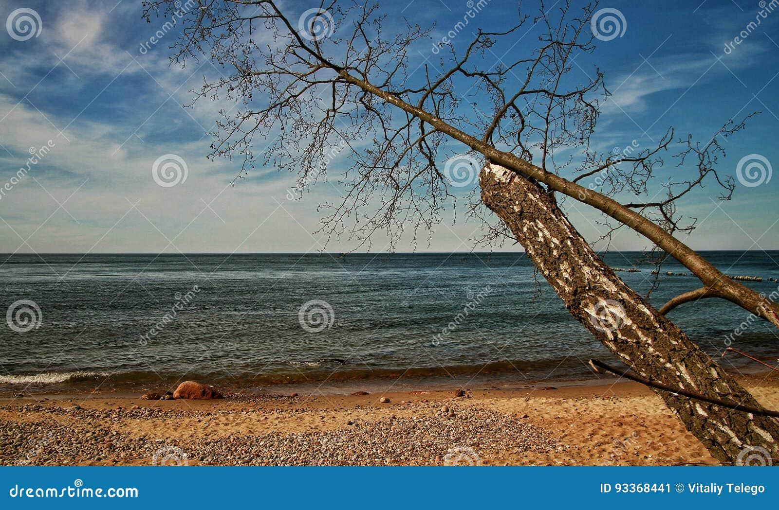 Ein sonniger Tag in der Ostsee
