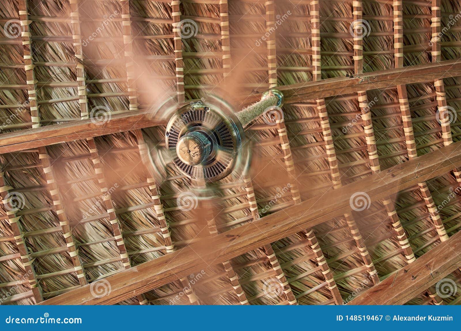 Ein spinnender Fan im Hintergrund eines Weidendachs