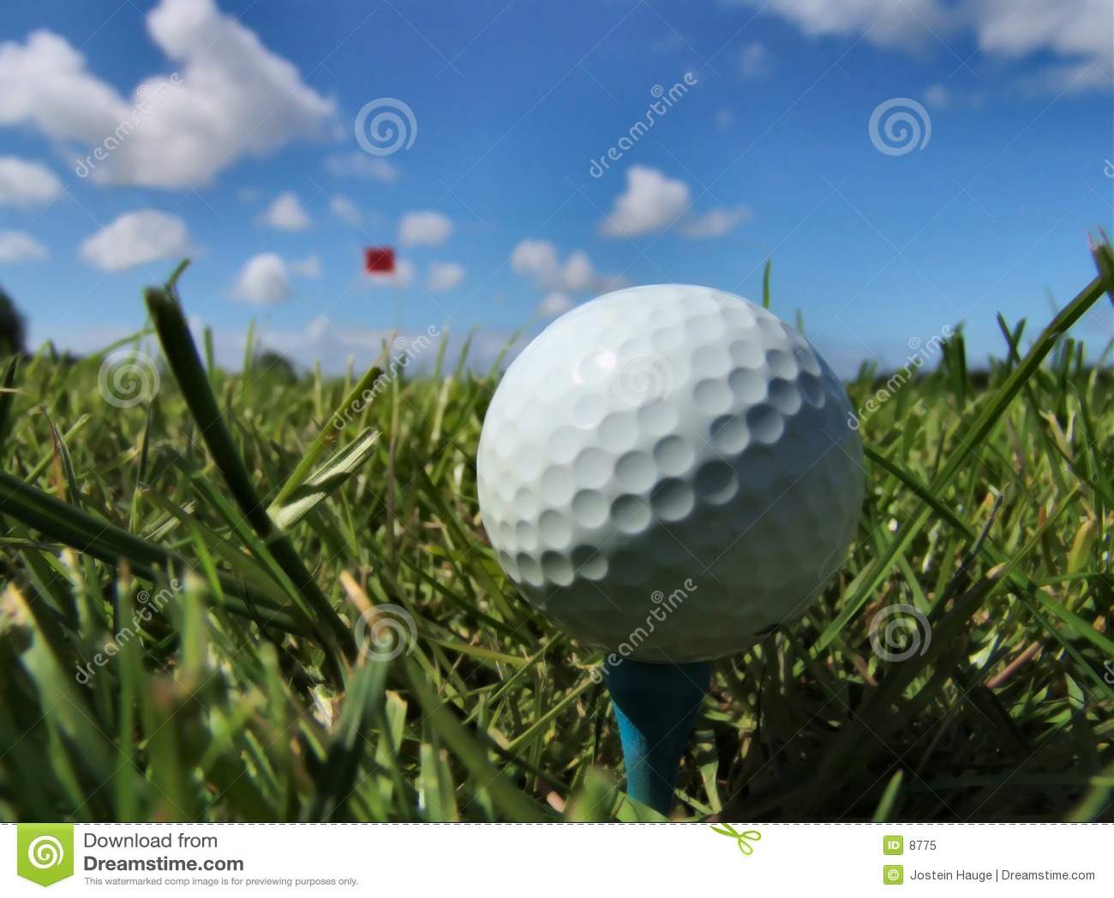 Ein vollkommener Tag für Golf