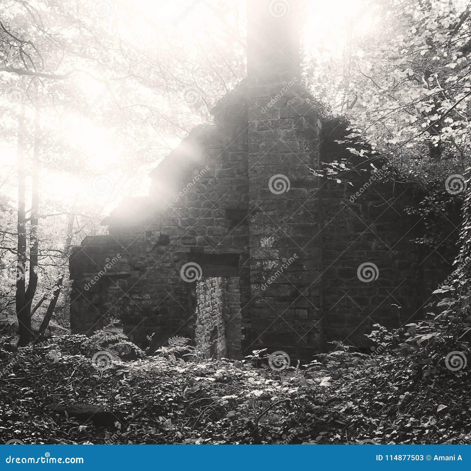 Eine alte aufgegebene Mühle, die im Wald errichtet