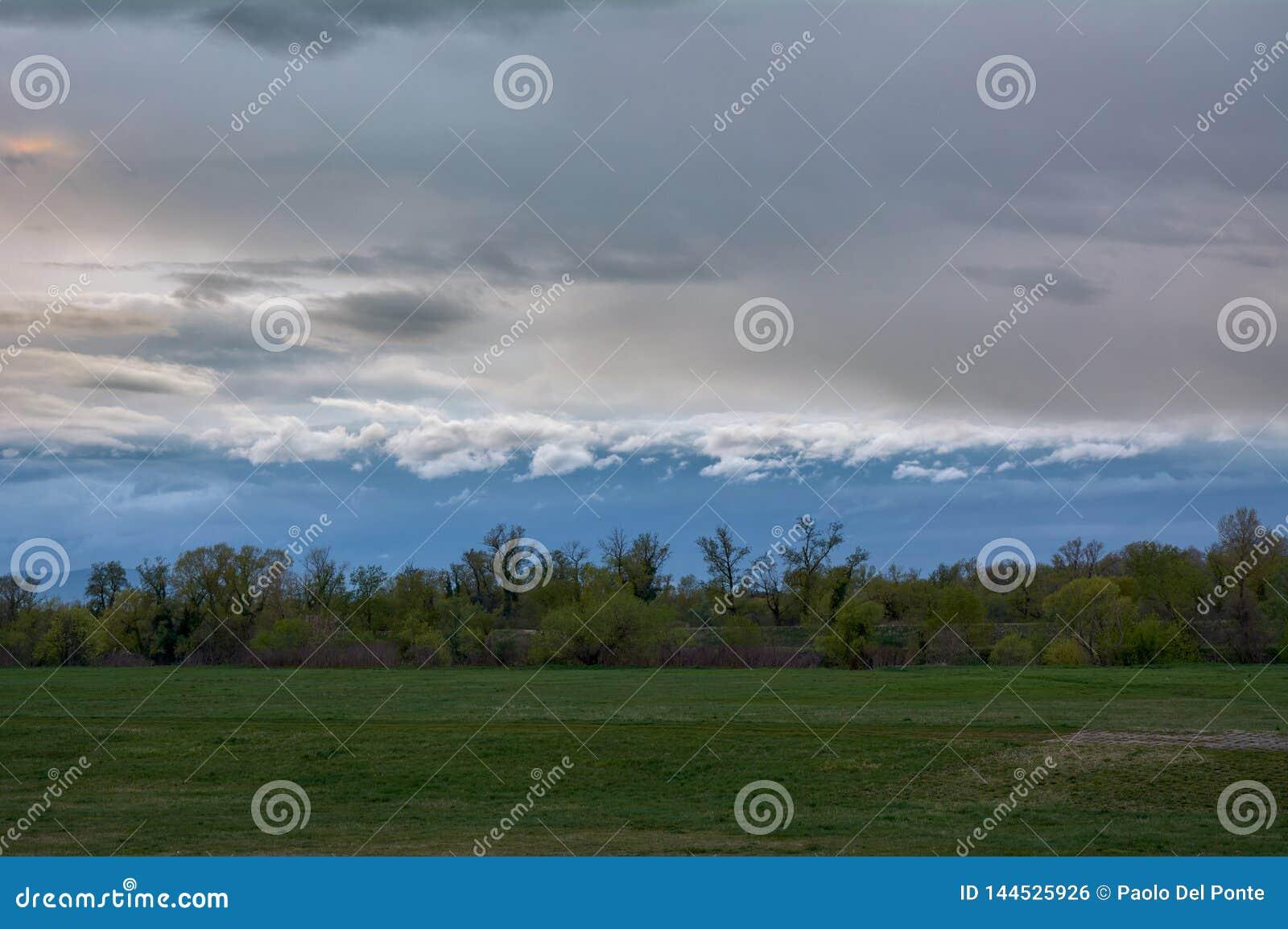 Eine Baumgruppe am Ende der Wiese, stürmische Wolken im Himmel nahe Sava in Zagreb