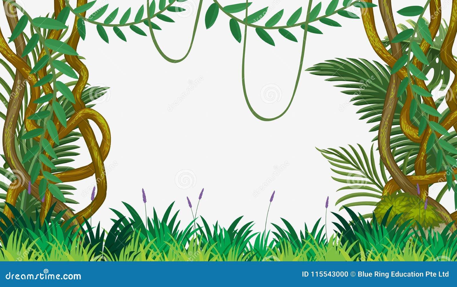 Eine Dschungel-Schablone mit Rebe
