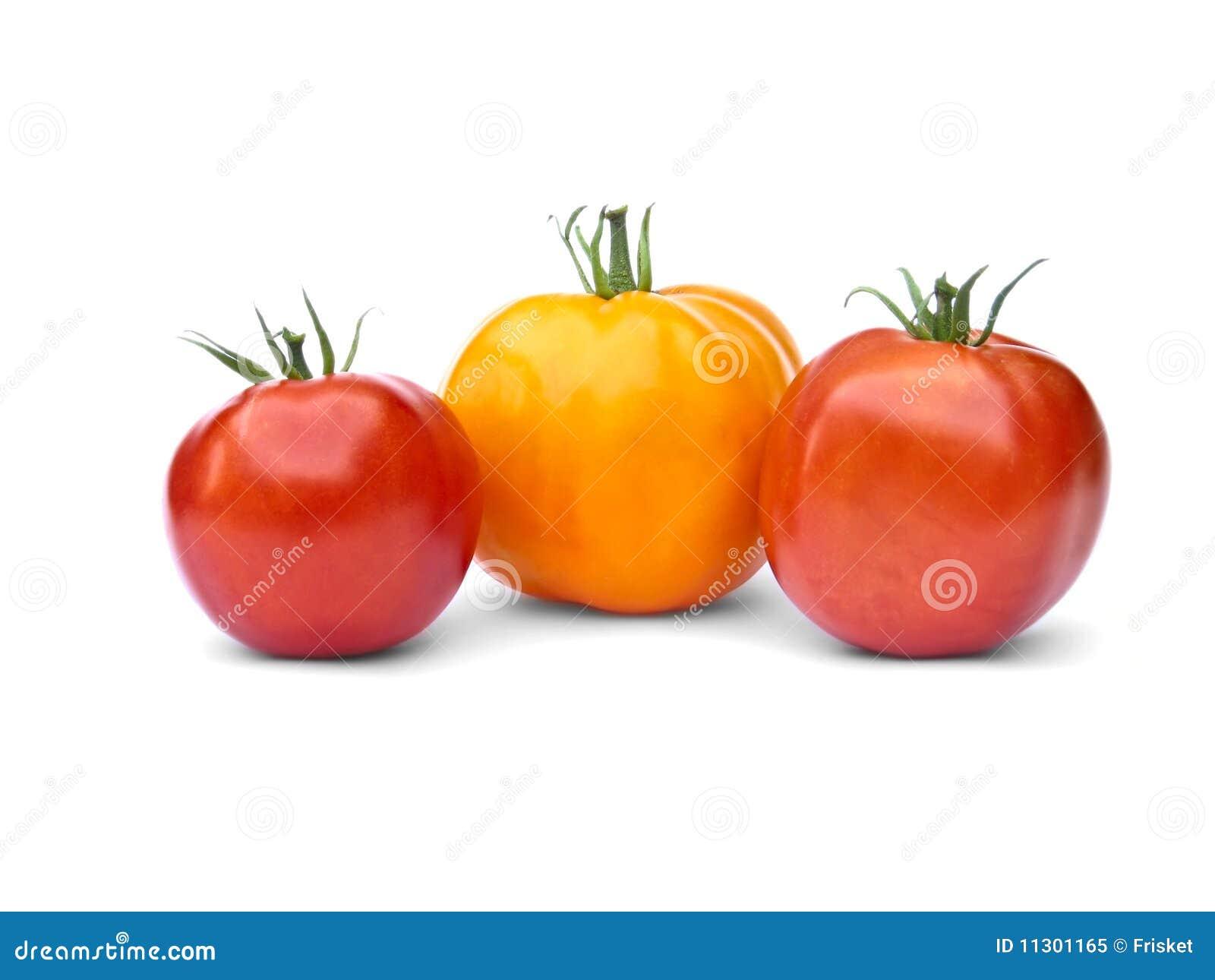 Eine gelben und zwei roten Tomaten