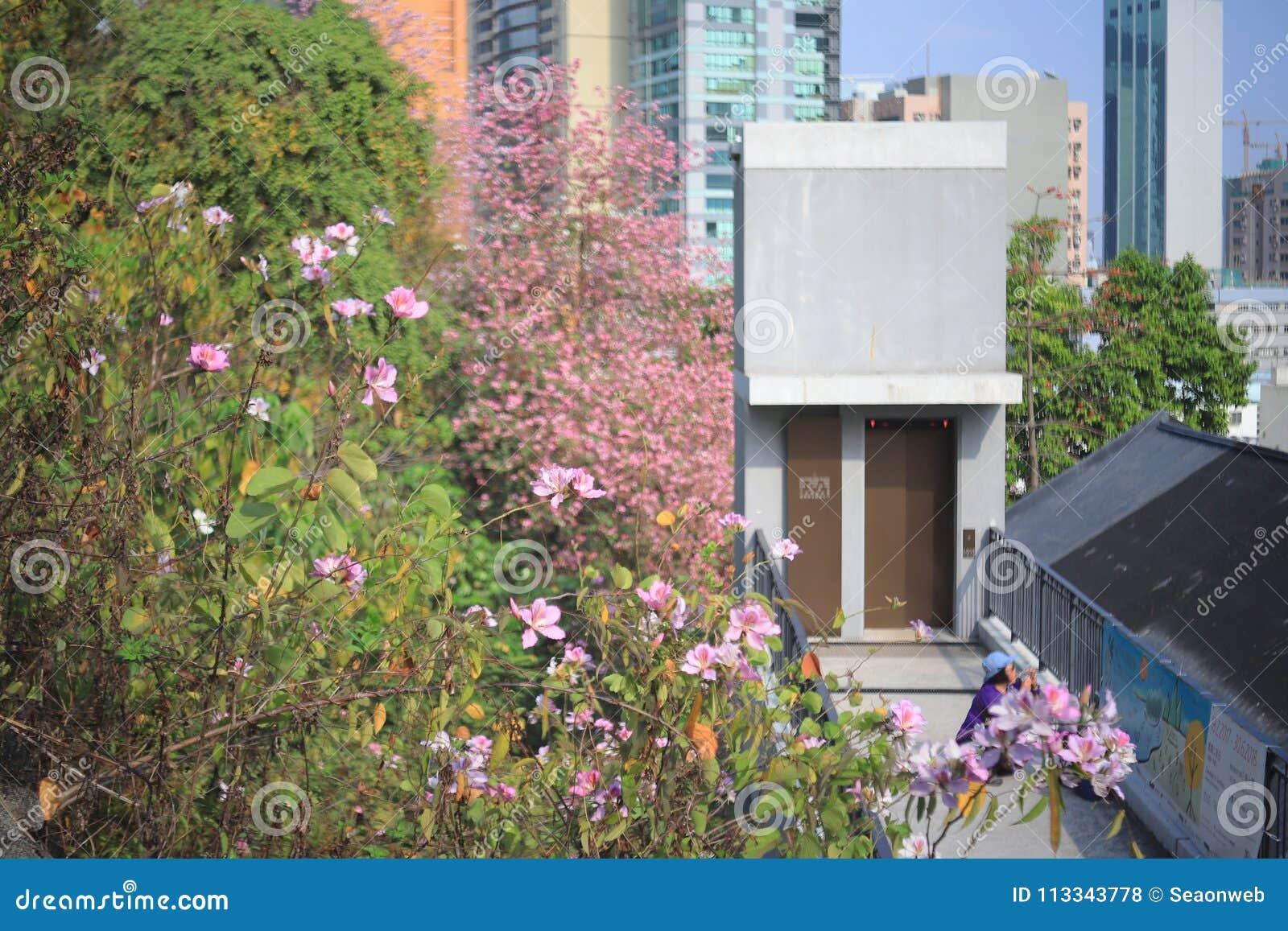 Eine Histroic-Architektur ein Ziegelstein errichtete Struktur in HK