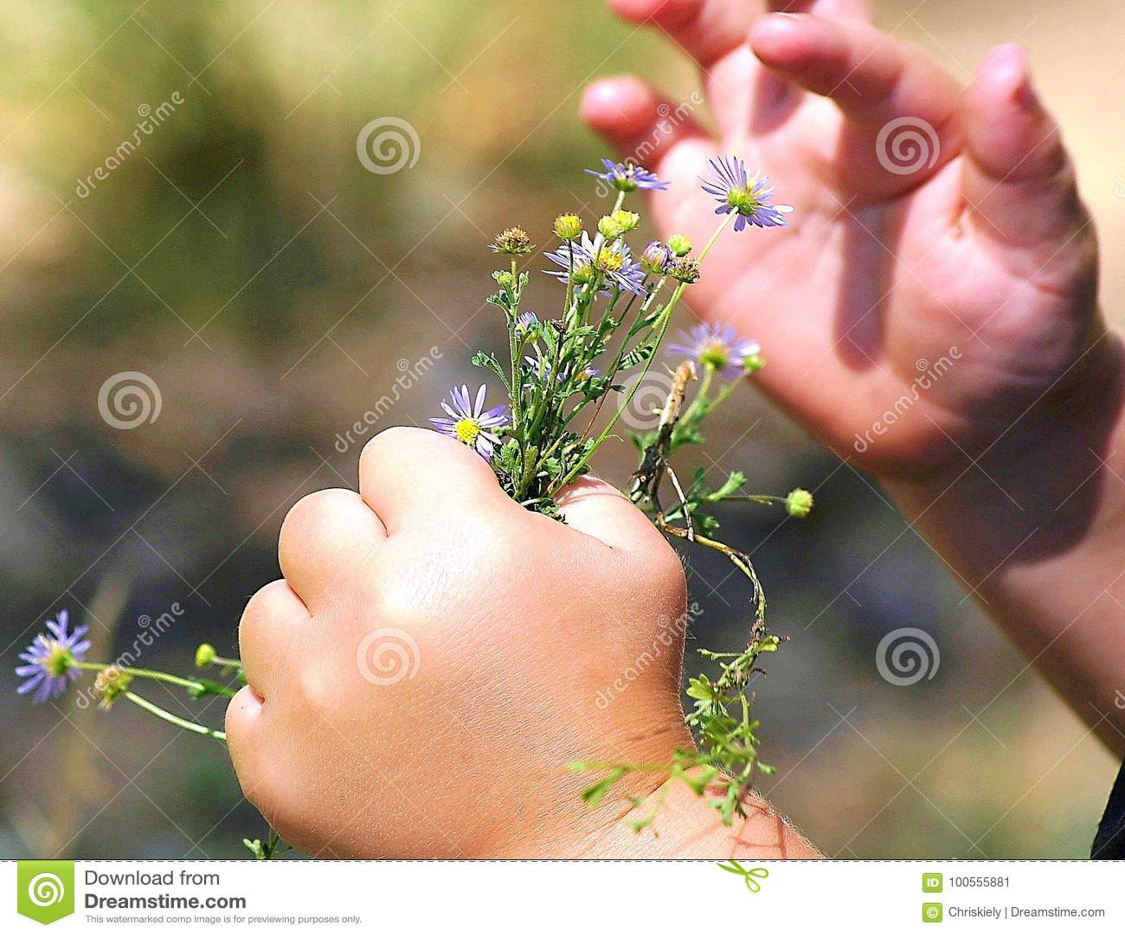 Eine Kind-` s Hand