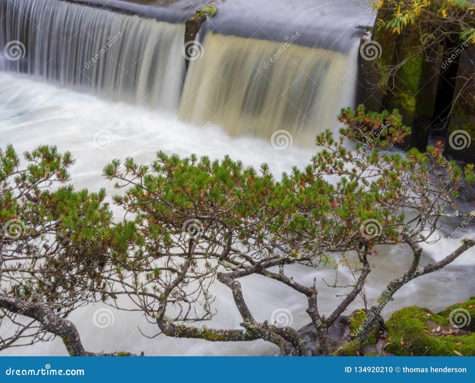 Eine Landschaftsansicht von tumwater Fällen in tumwater Washington