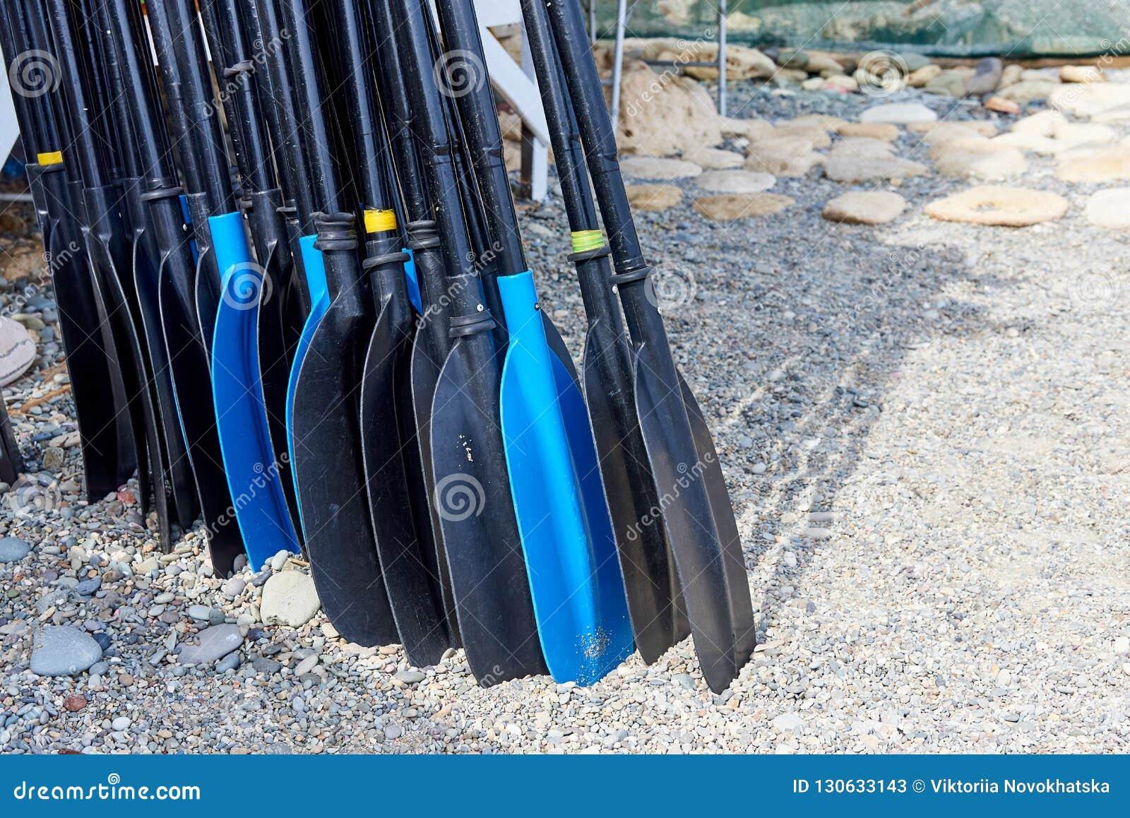 Eine Reihe von Rudern auf dem Strand