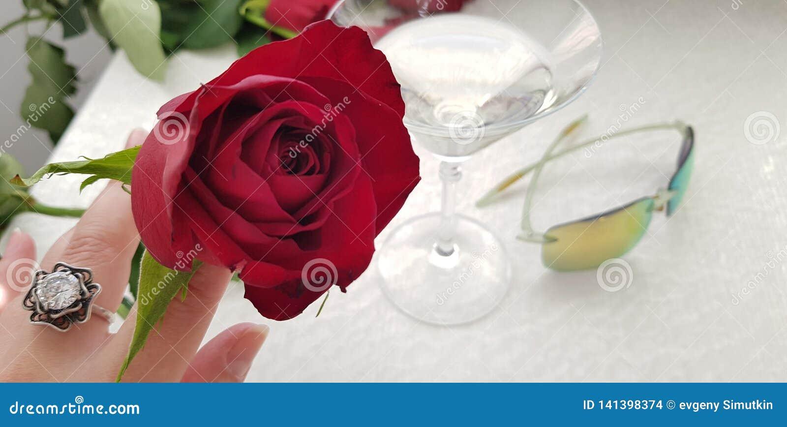 Eine rote Rose in den weiblichen Fingern, die silbernen Ring mit weißem großem Stein tragen