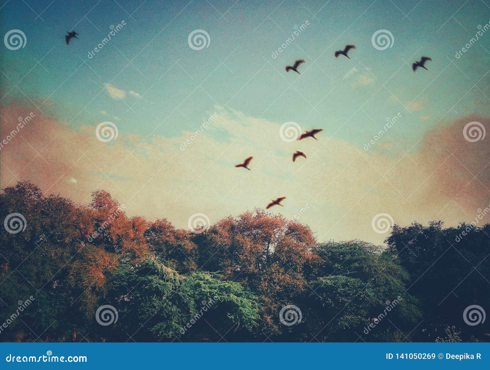 Eine schöne Landschaft der Landschaft mit einer ästhetischen Note
