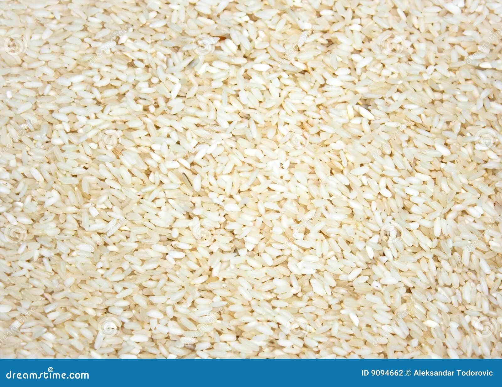 Eine Schicht des Reisgetreides als Hintergrund oder Beschaffenheit