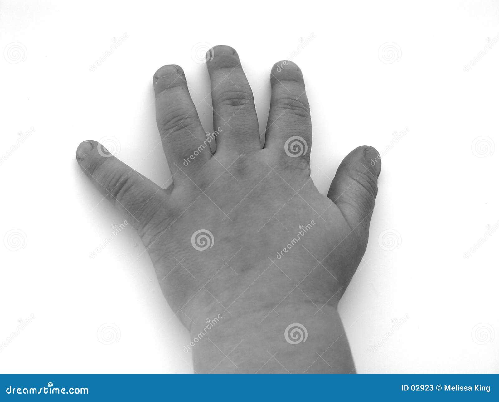 Eine wenige Hand