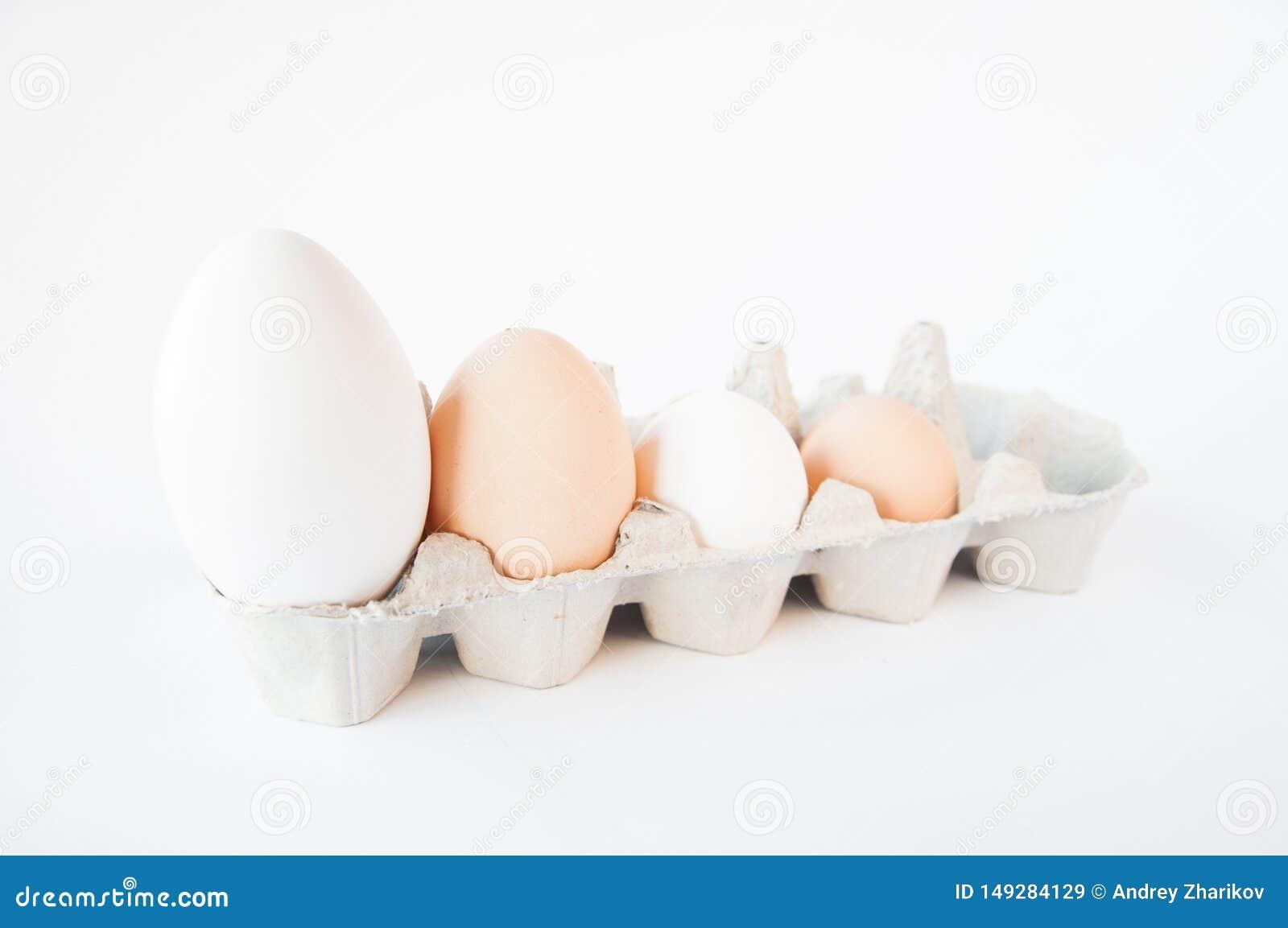 In einem kleinen Beh?lter sind vier Eier