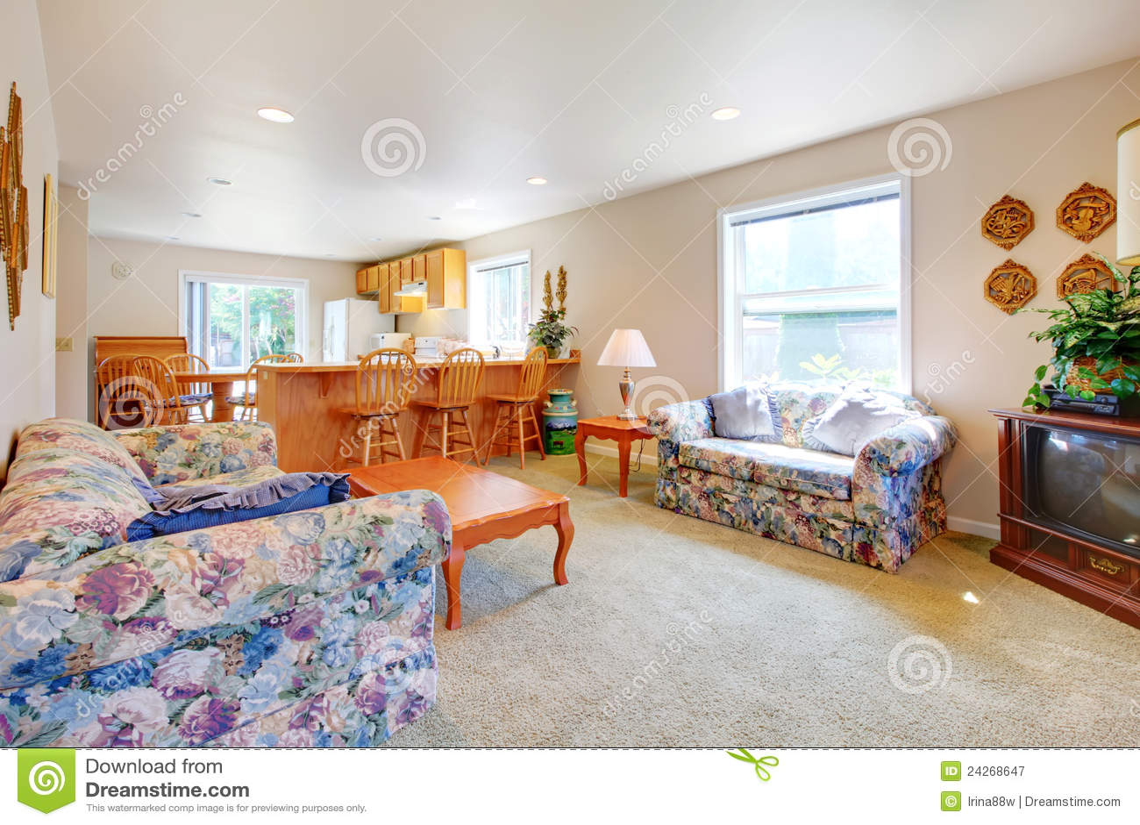Einfaches Langes Wohnzimmer Mit Küche Und Alten Sofas. Stockbild ...