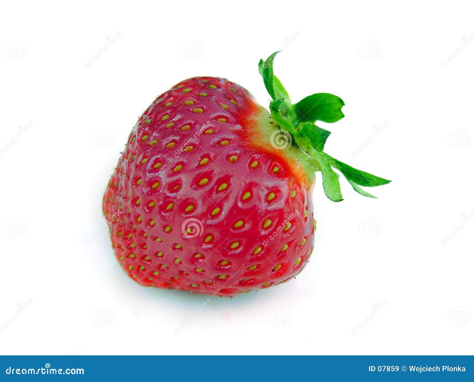 Einsame Erdbeere