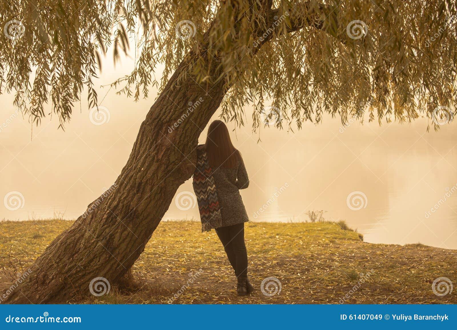 Einsame Frau, die Rest unter dem Baum nahe dem Wasser in einem nebeligen Herbsttag hat Einsame Frau, die Naturlandschaft im Herbs